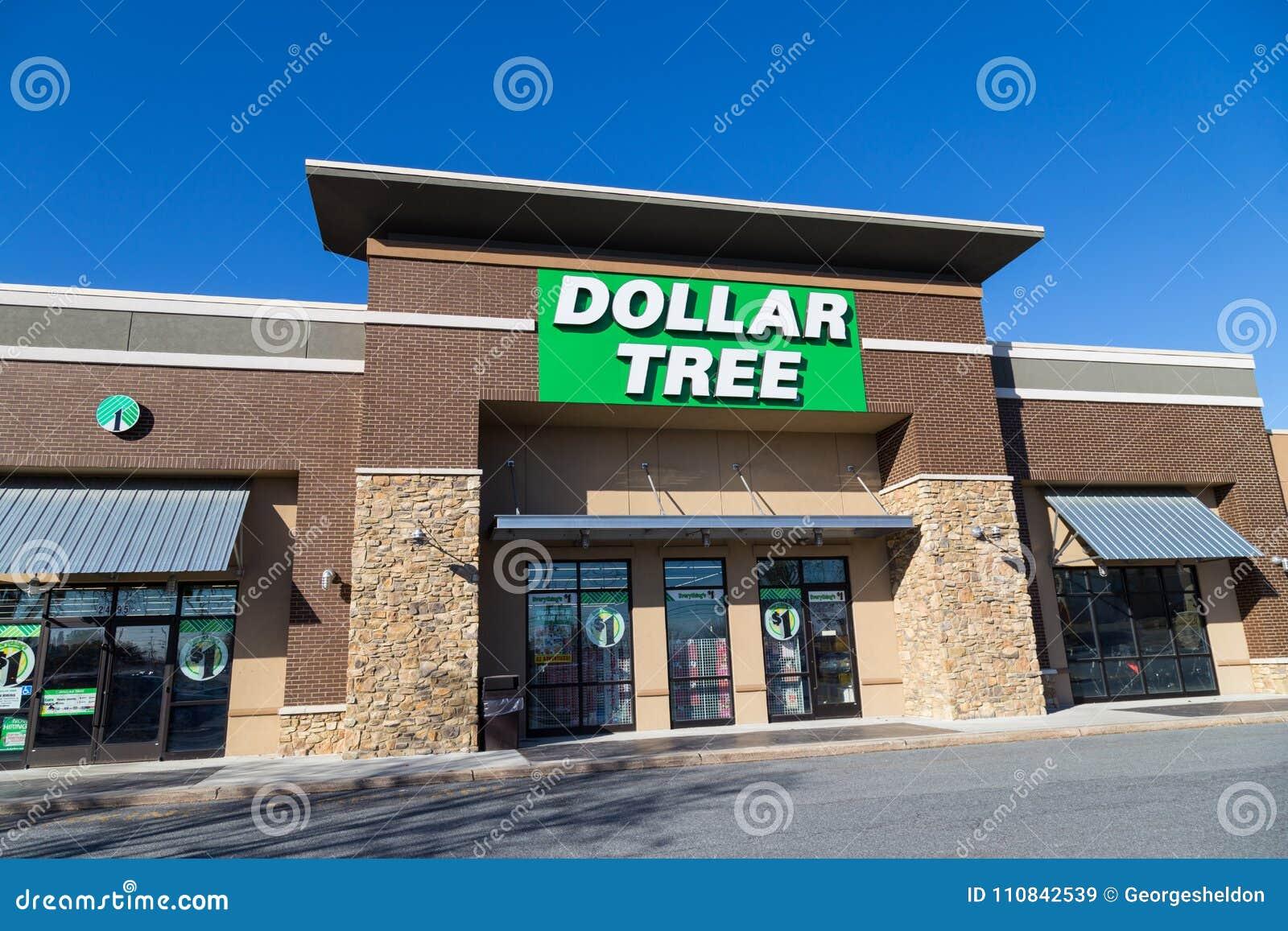Entrata dell albero del dollaro