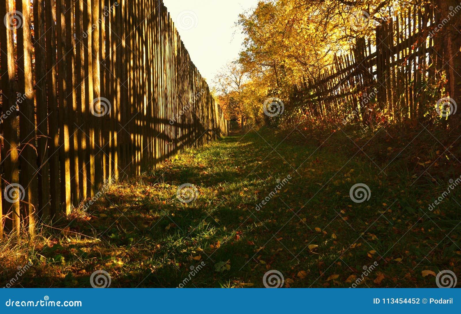 Entre les barrières