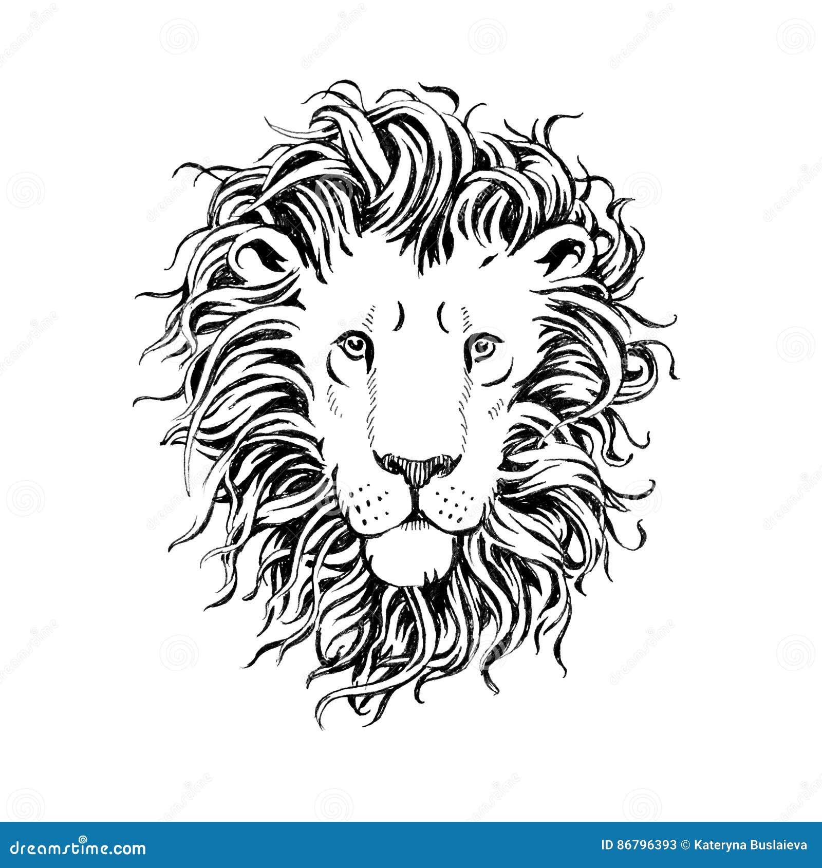 Entregue a leões tirados a cabeça isolada no fundo branco