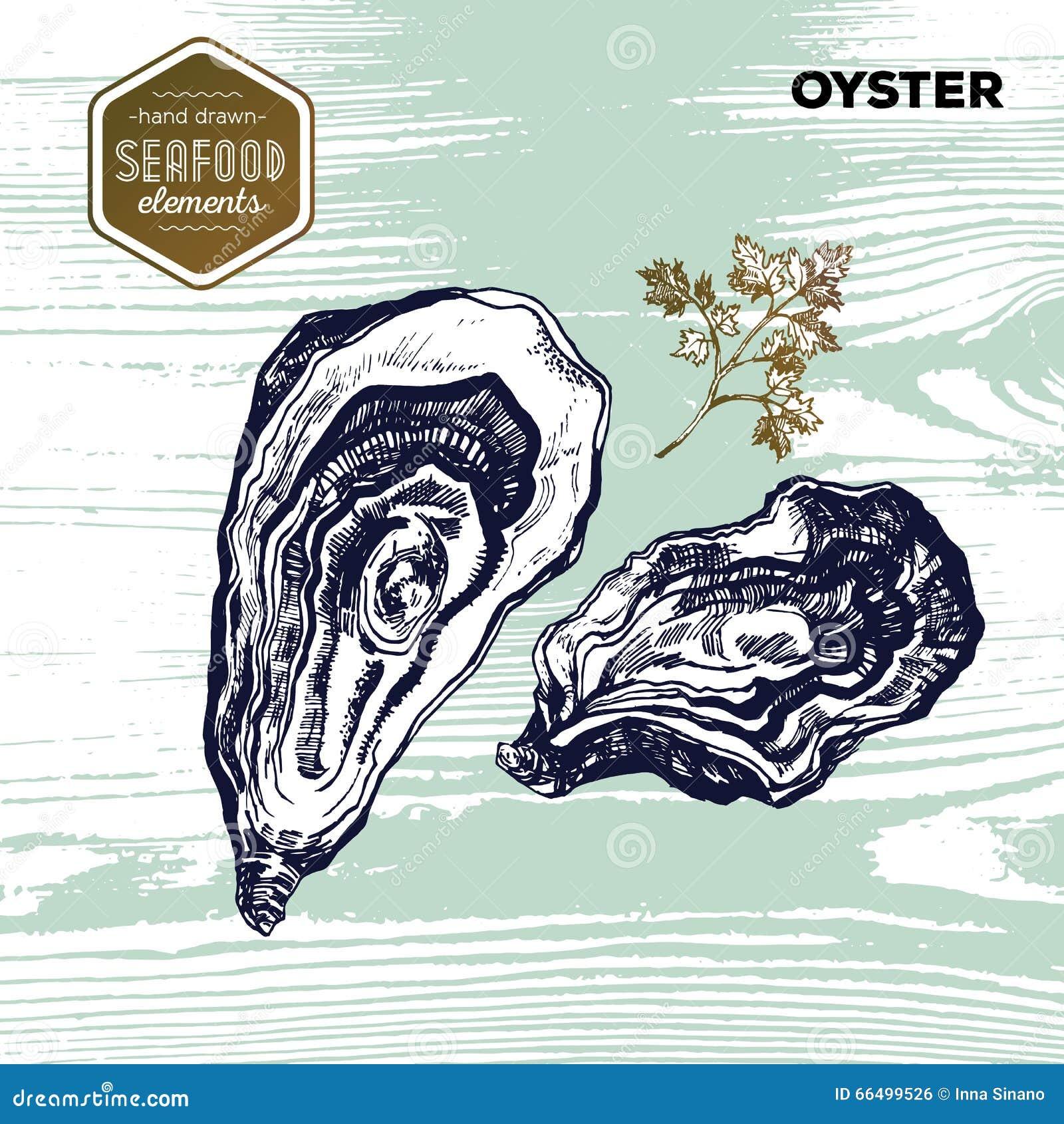 Entregue o marisco tirado do esboço das ostras e da salsa