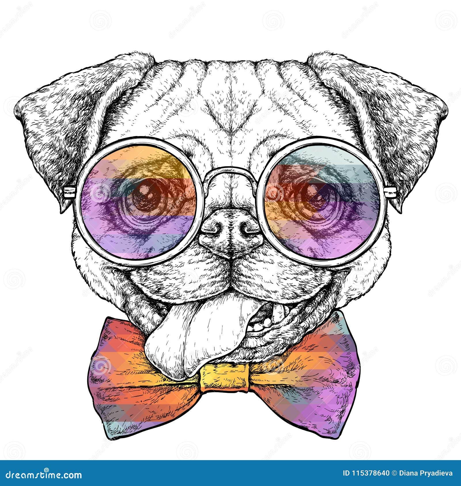 Entregue a vintage tirado o esboço retro do estilo do moderno do cão engraçado bonito do Pug nos vidros Ilustração do vetor