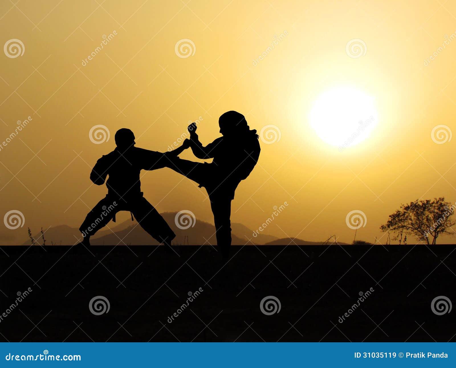 Entrenamiento de los artes marciales de la autodefensa