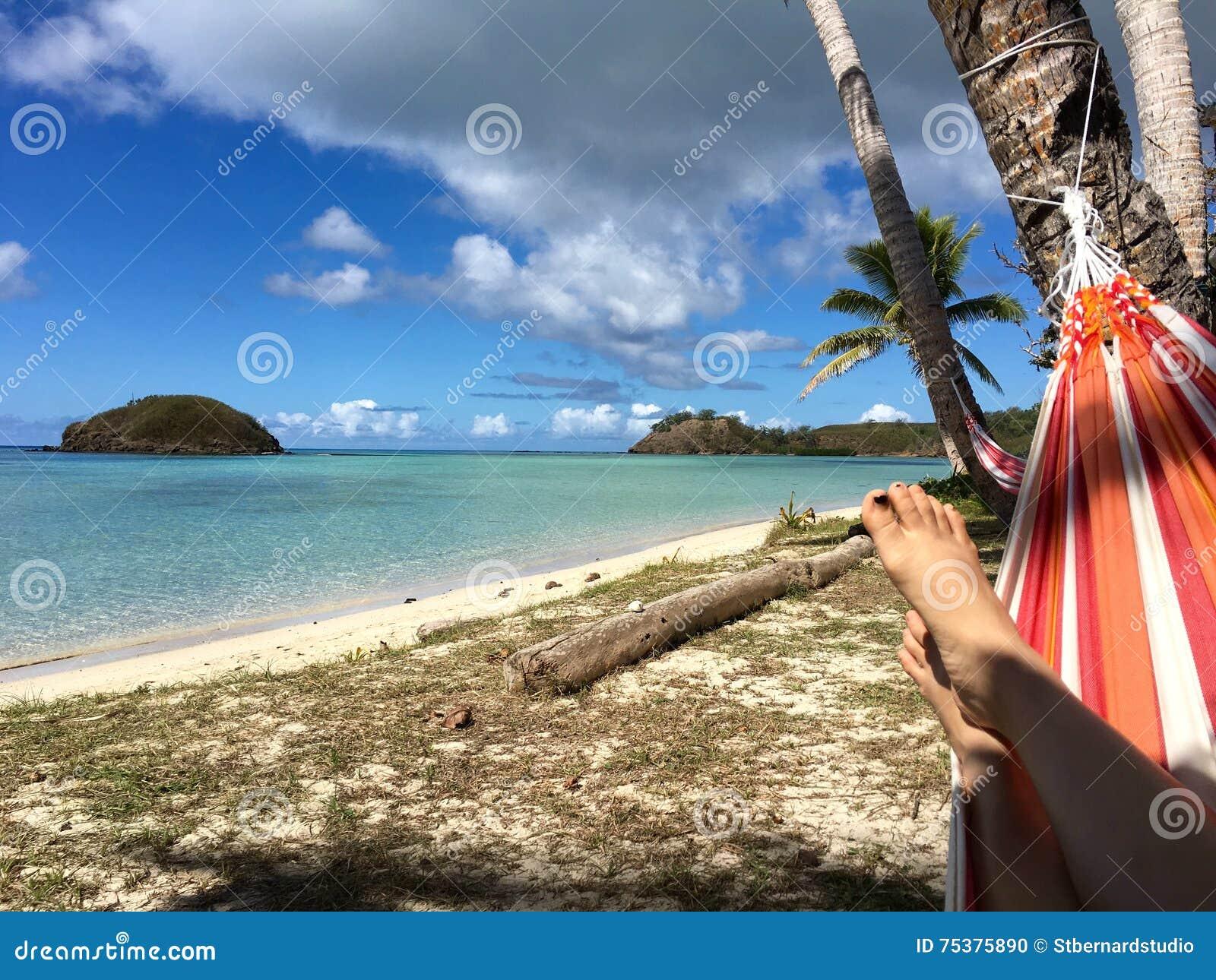 Entspannung unter Kokosnussbaumschatten auf bunter Hängematte