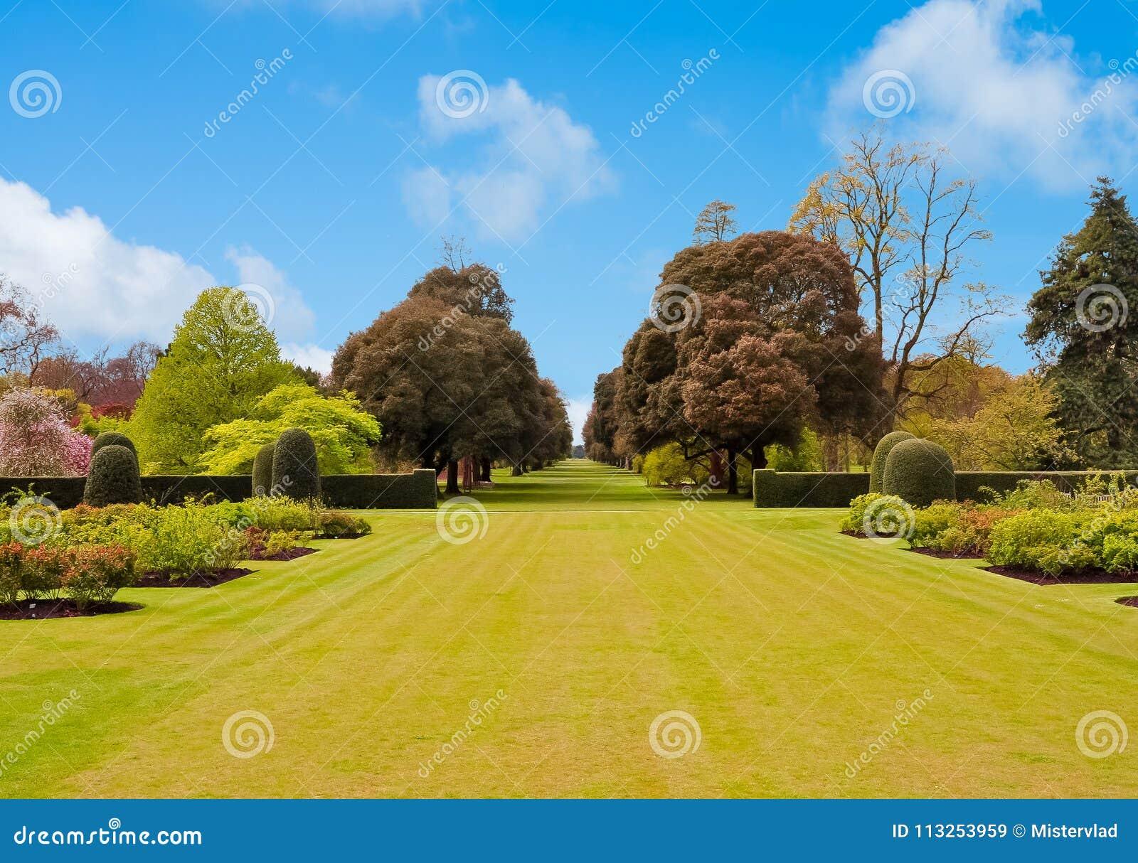 Entspringen Sie in botanischen Garten Kew, London, Großbritannien