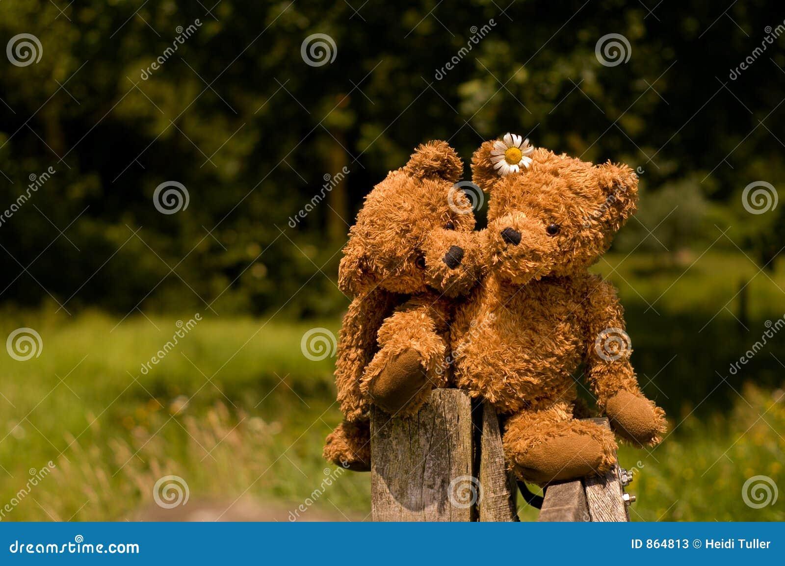 Entzückende teddybear Paare in der Liebe