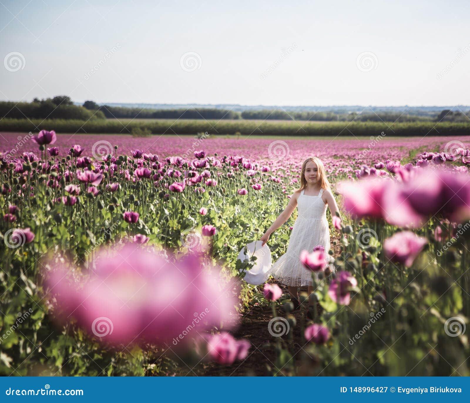 Entz?ckendes kleines M?dchen mit dem langen Haar in wei?es Kleiderdem einsamen Gehen auf dem lila Poppy Flowers-Gebiet