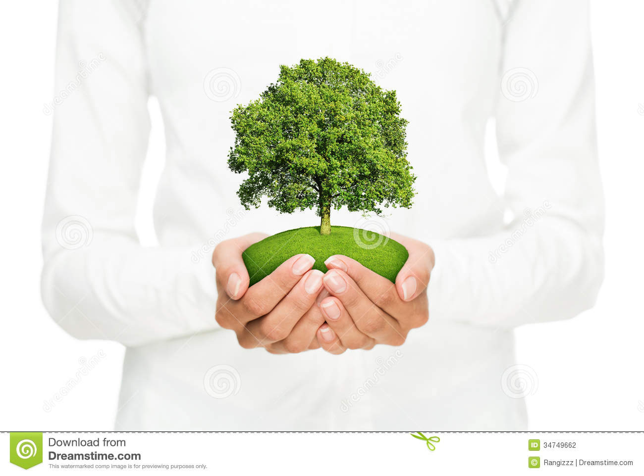 conservation of environment The environmental conservation and sustainability degree is comprised of 14  core requirements providing integrative courses in both environmental.