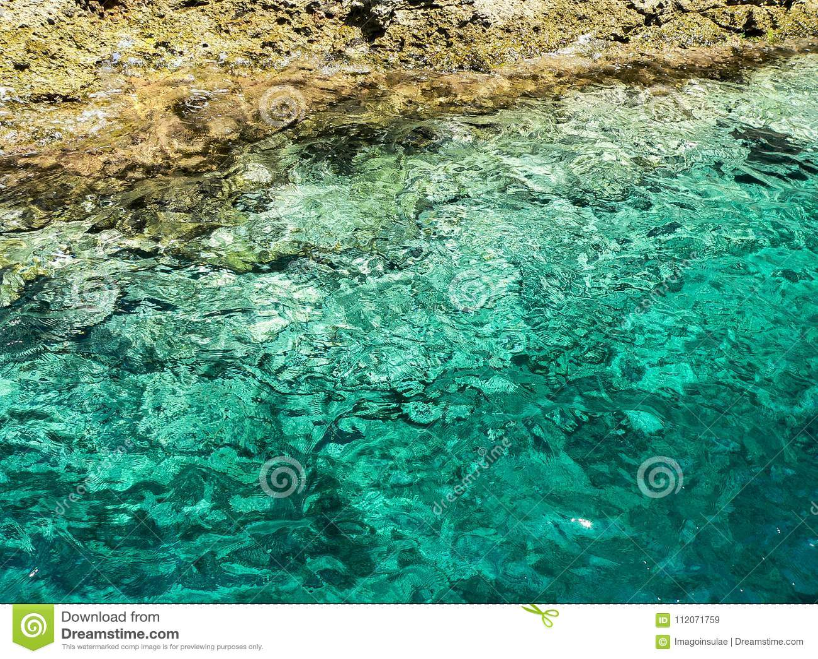 Environment. Water. Ocean
