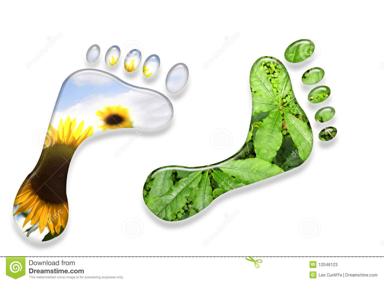 concepts of ecological footprints Ecological footprint is a term that has been making the rounds these concepts are brought together to create the ecological footprint that is most often.