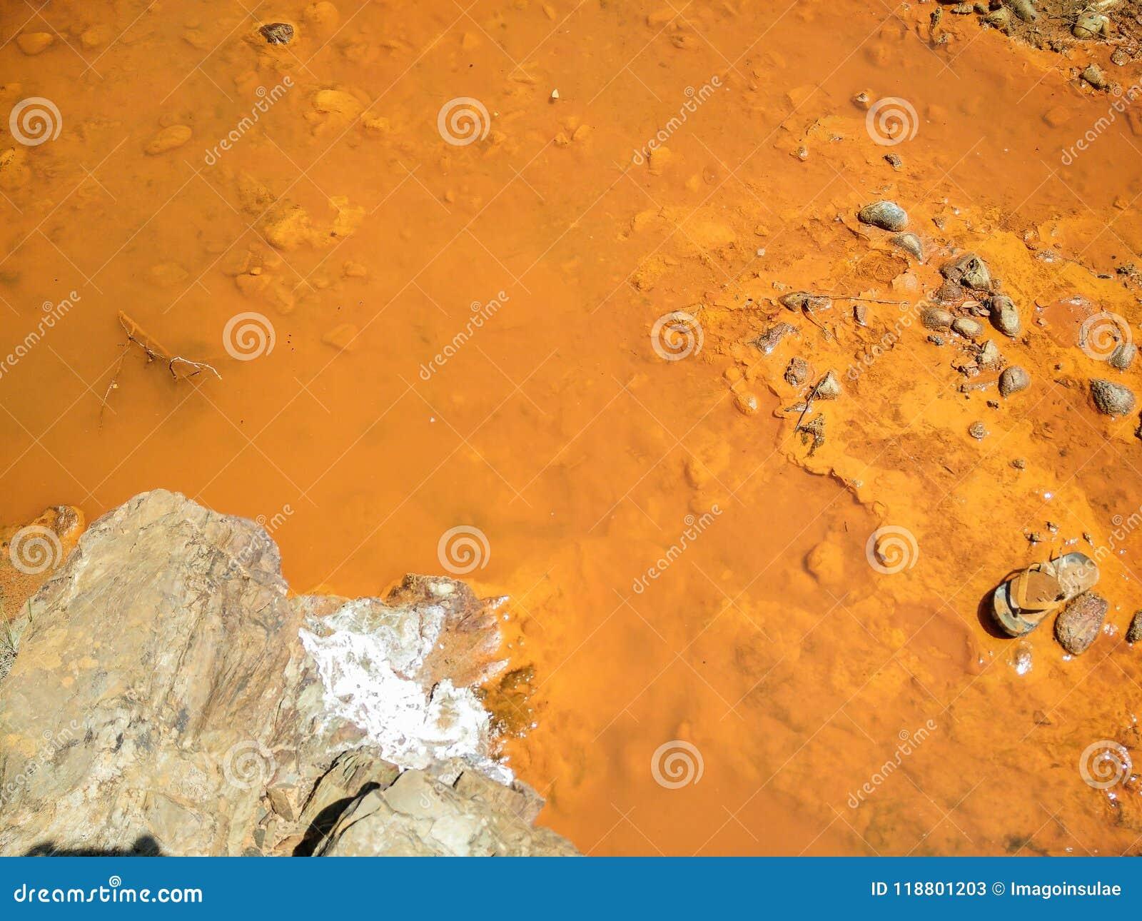 Environmental pollution. Water