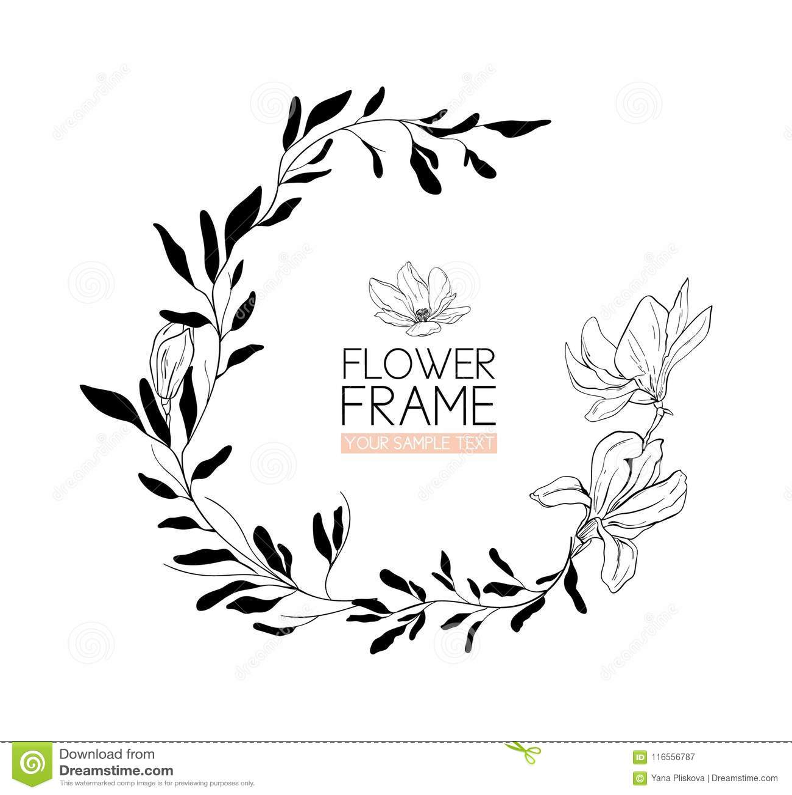 Envolva O Desenho E O Esboço Da Flor Da Magnólia Com Linha