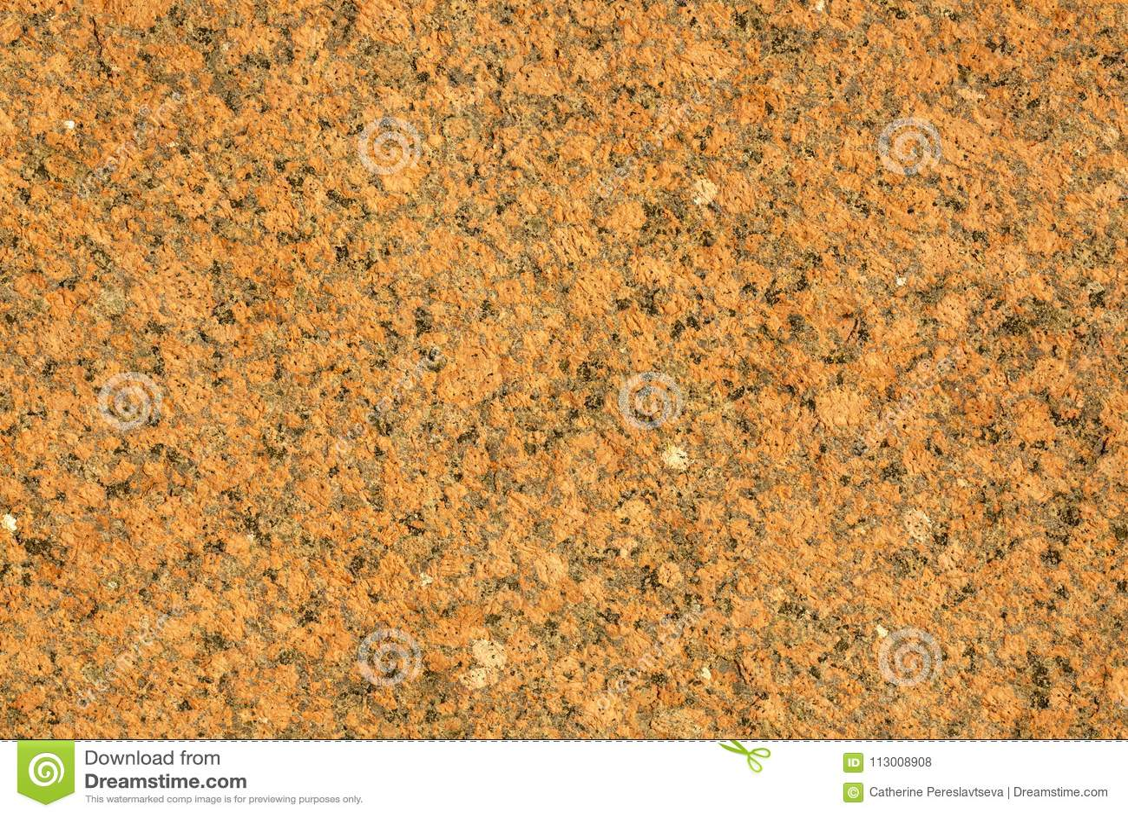 Eps 10 medf8ort granitsmula Röd granitsmula