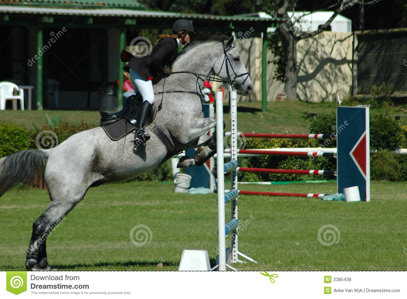 Equestrian Royalty Free Stock Photos - Image: 2385438