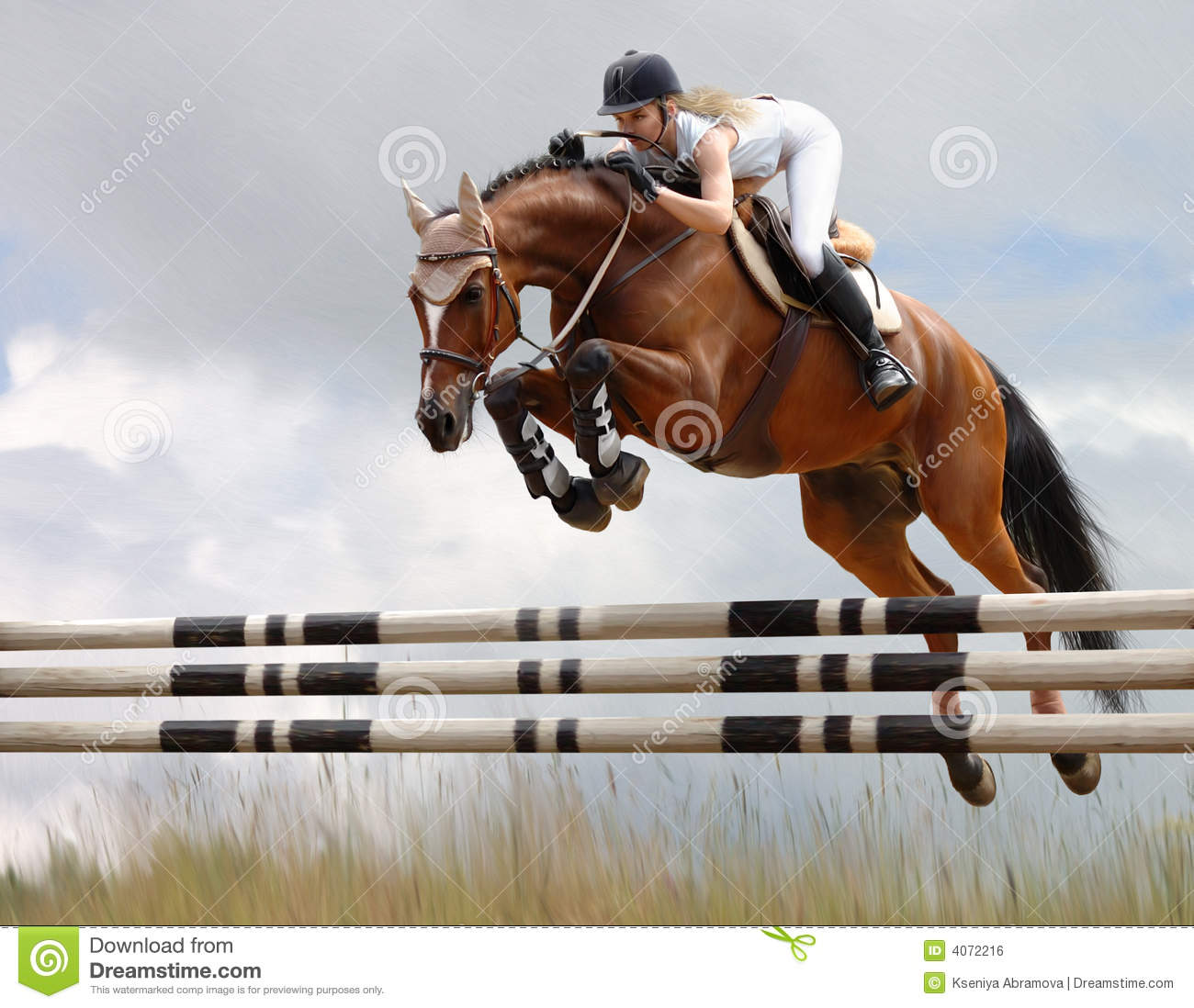 equestrian horse jumping stock photo image of horseback 4072216