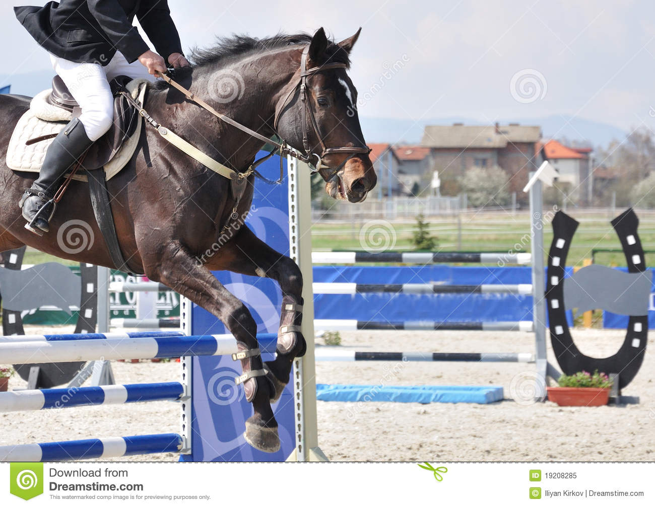Equestrian jumping on brown horse