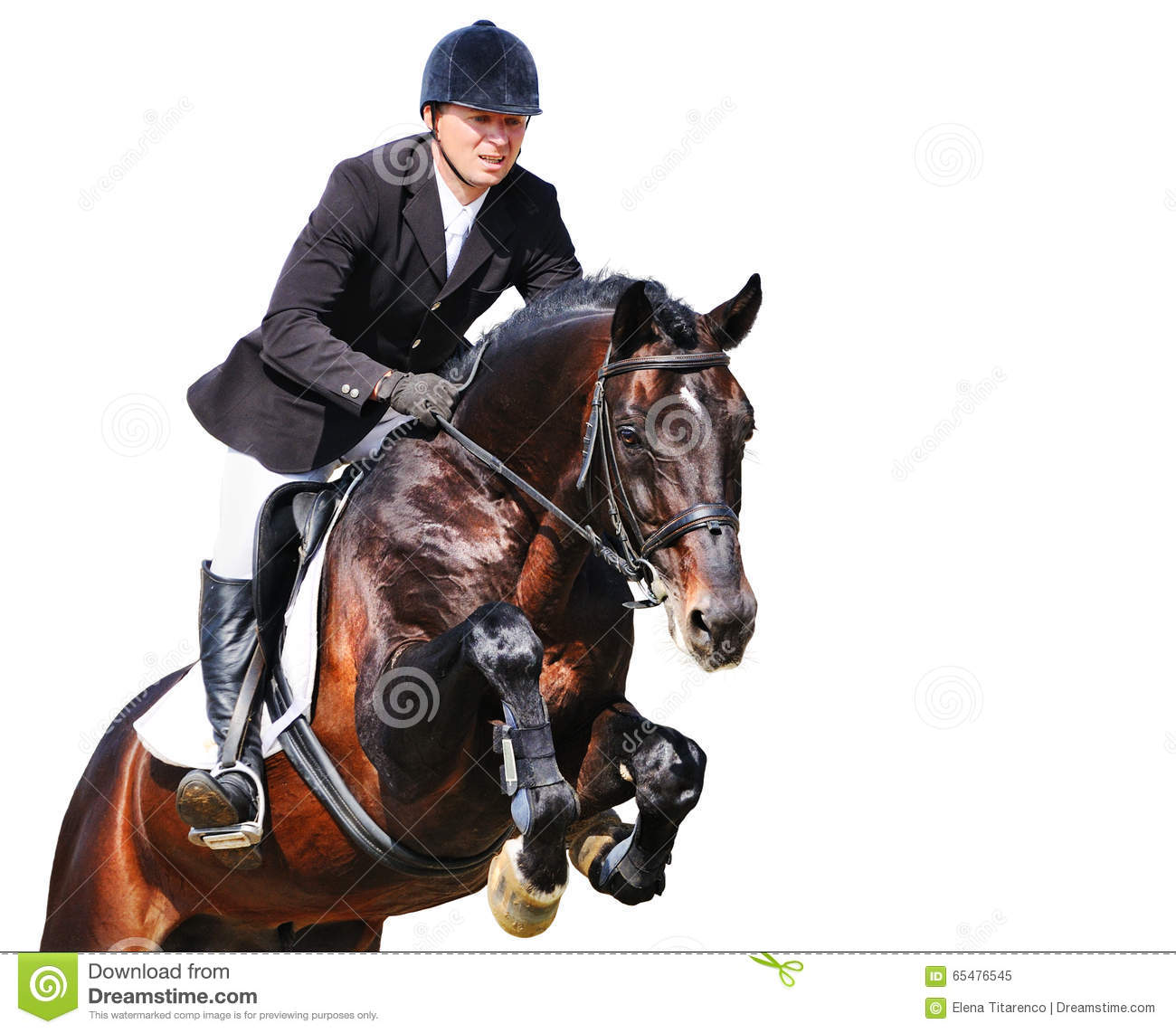 Equestrian: rider with bay horse in jumping show, isolated