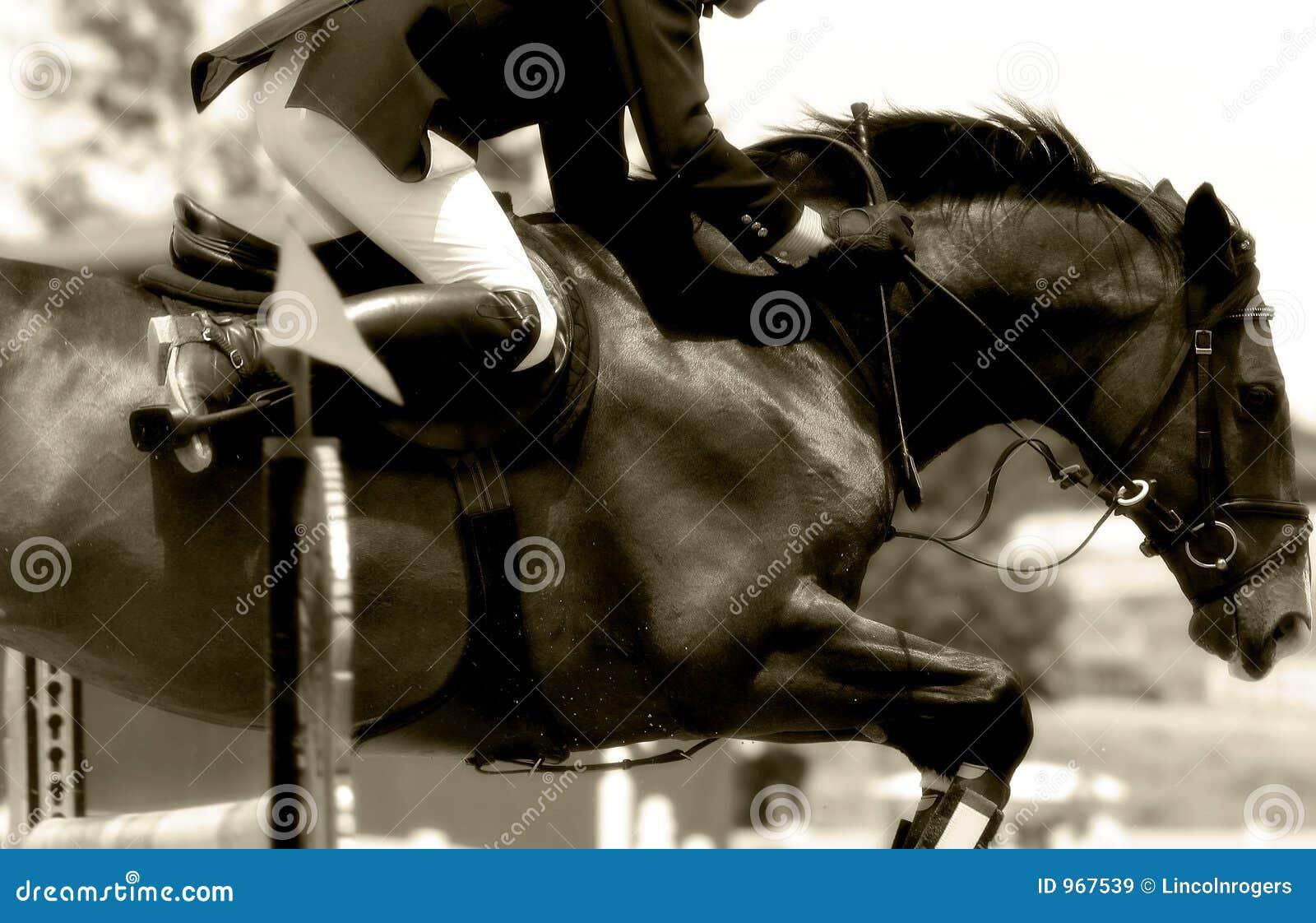 Equestrian Show Jumping Close-up #2 (Sepia))