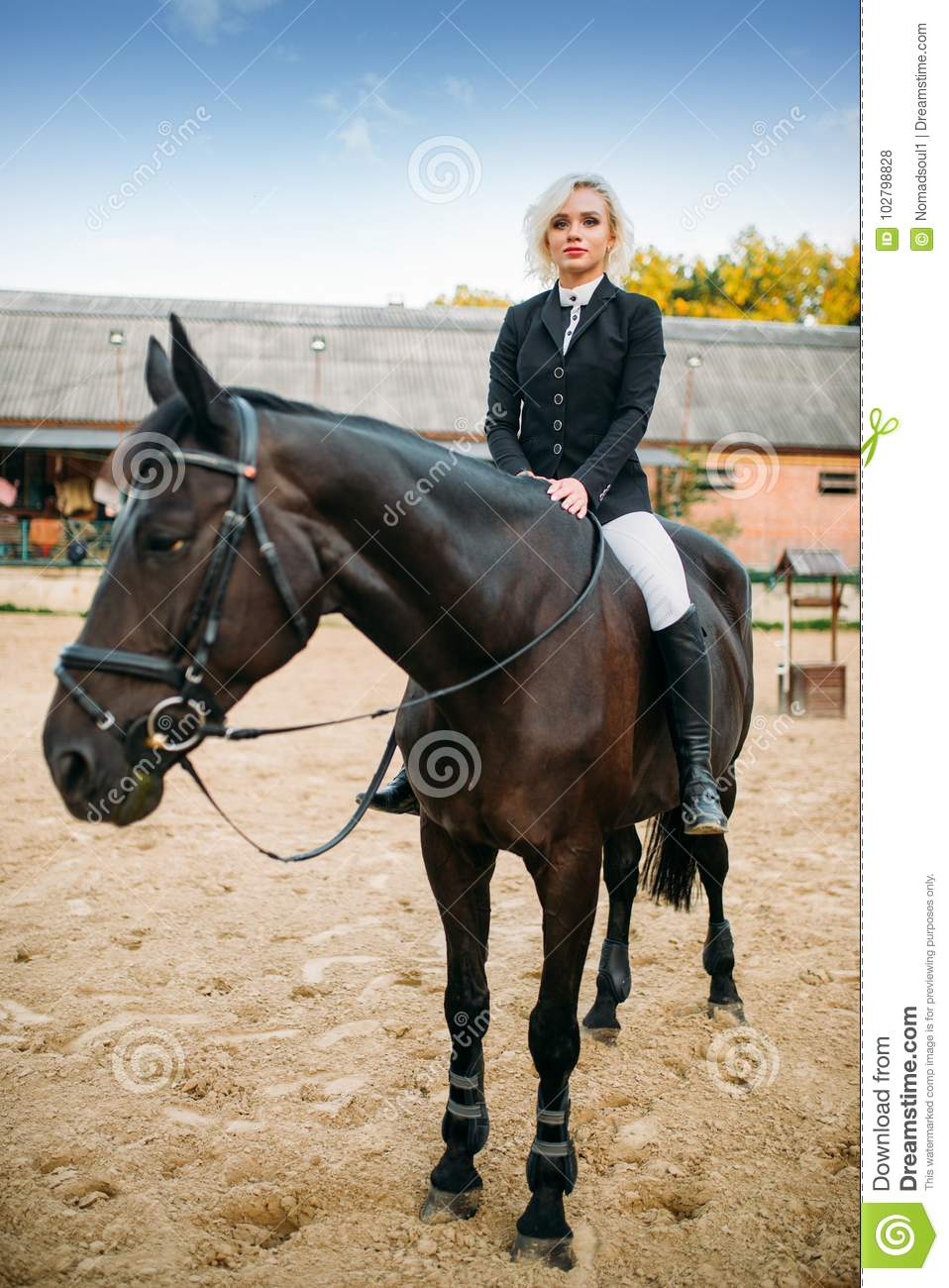 Equestrian Sport Woman Poses On Horseback Stock Photo Image Of Leisure Human 102798828
