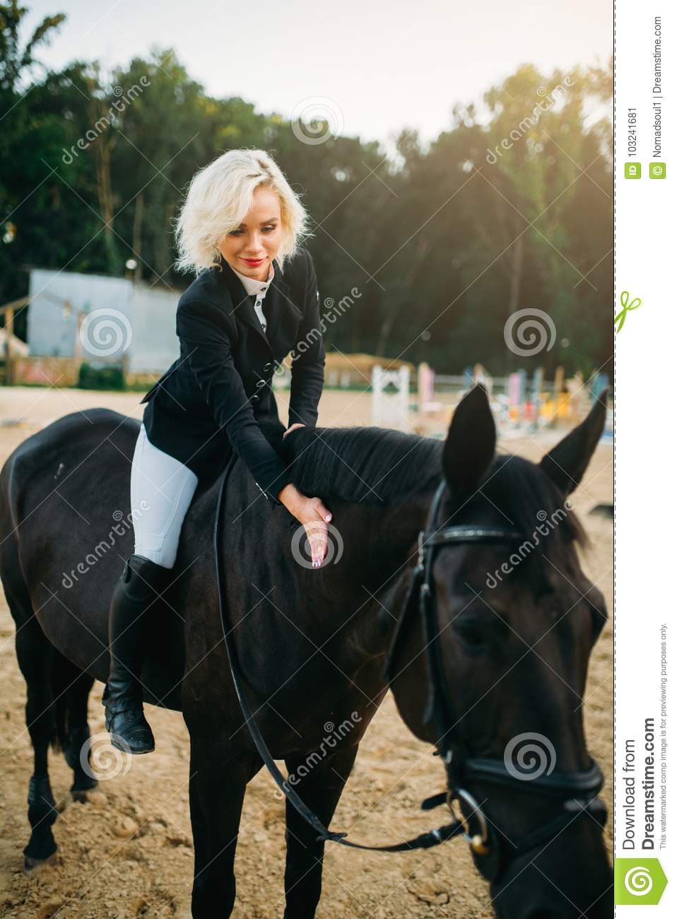 Equestrian Sport Woman Poses On Horseback Stock Image Image Of Friendship Animal 103241681