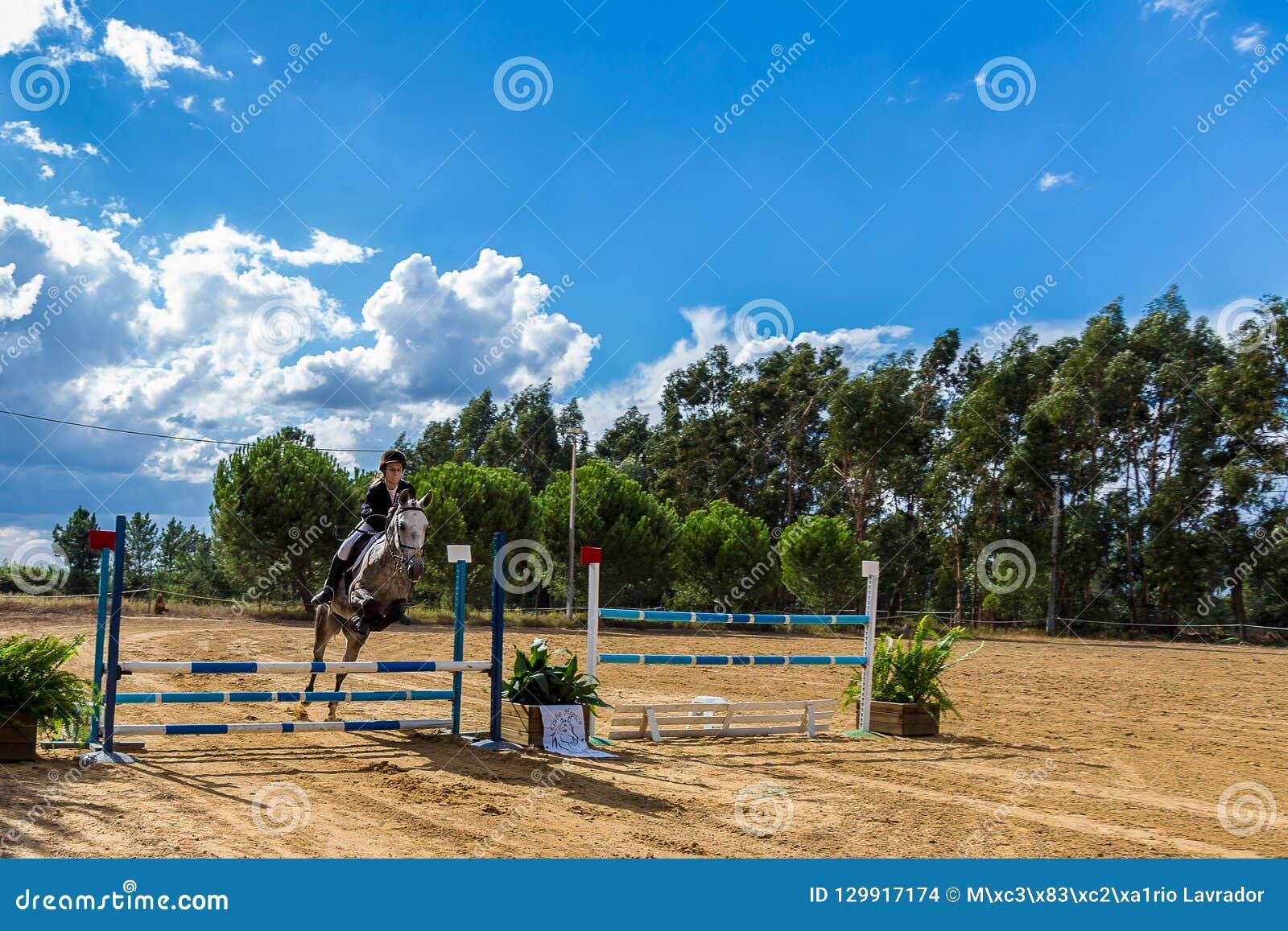 Equestrianism em uma reserva portuguesa do cavalo da natureza