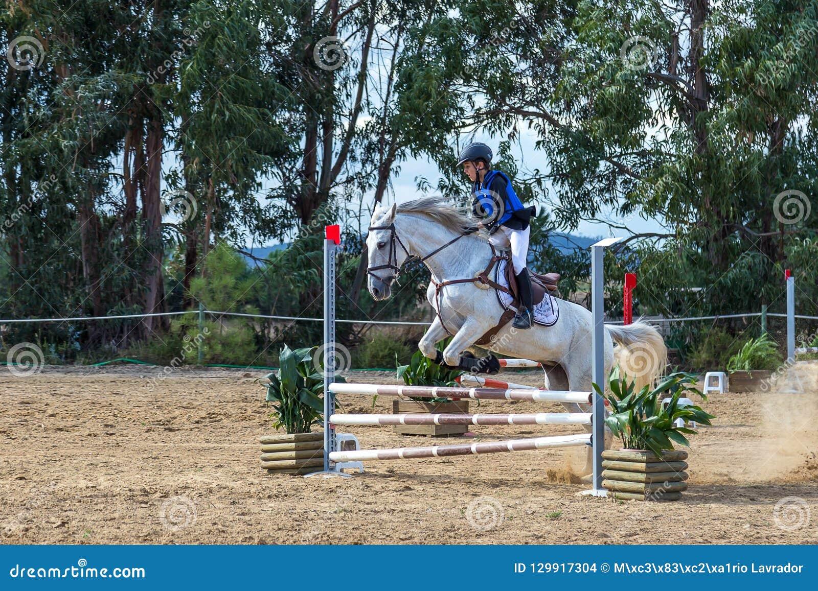 Equestrianism in a Portuguese Nature Horse Reserve