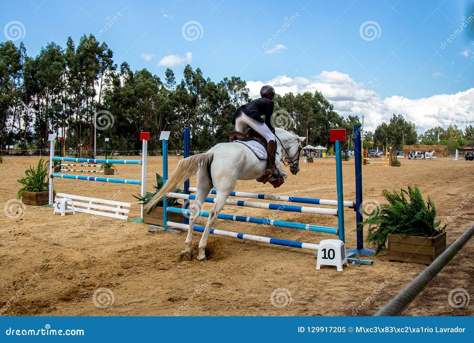 Equestrianism w Portugalskiej natura konia rezerwie
