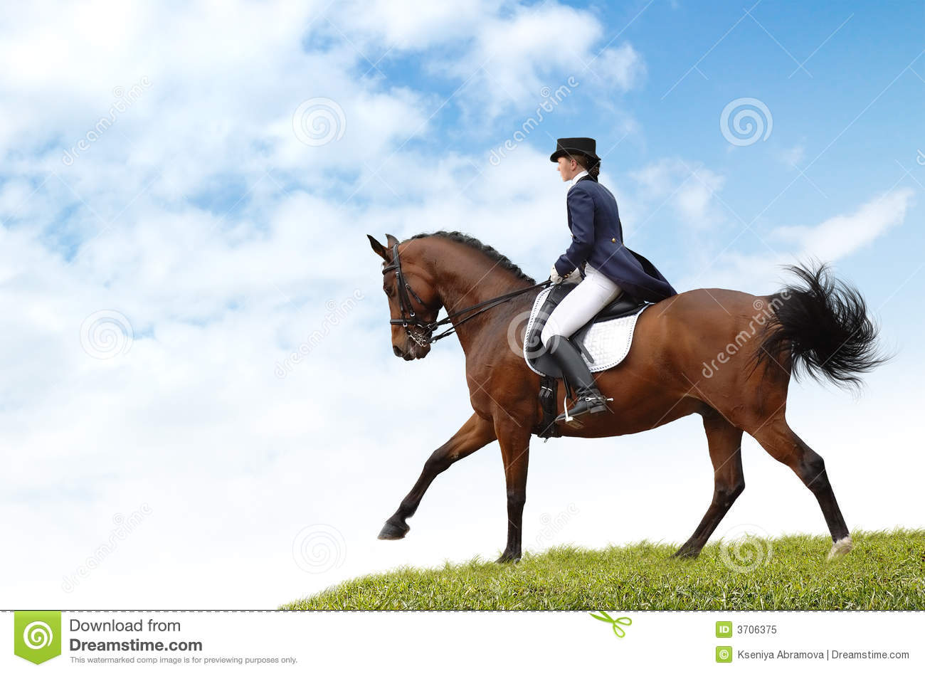 Equestriat Dressage Woman And Bay Horse Royalty Free