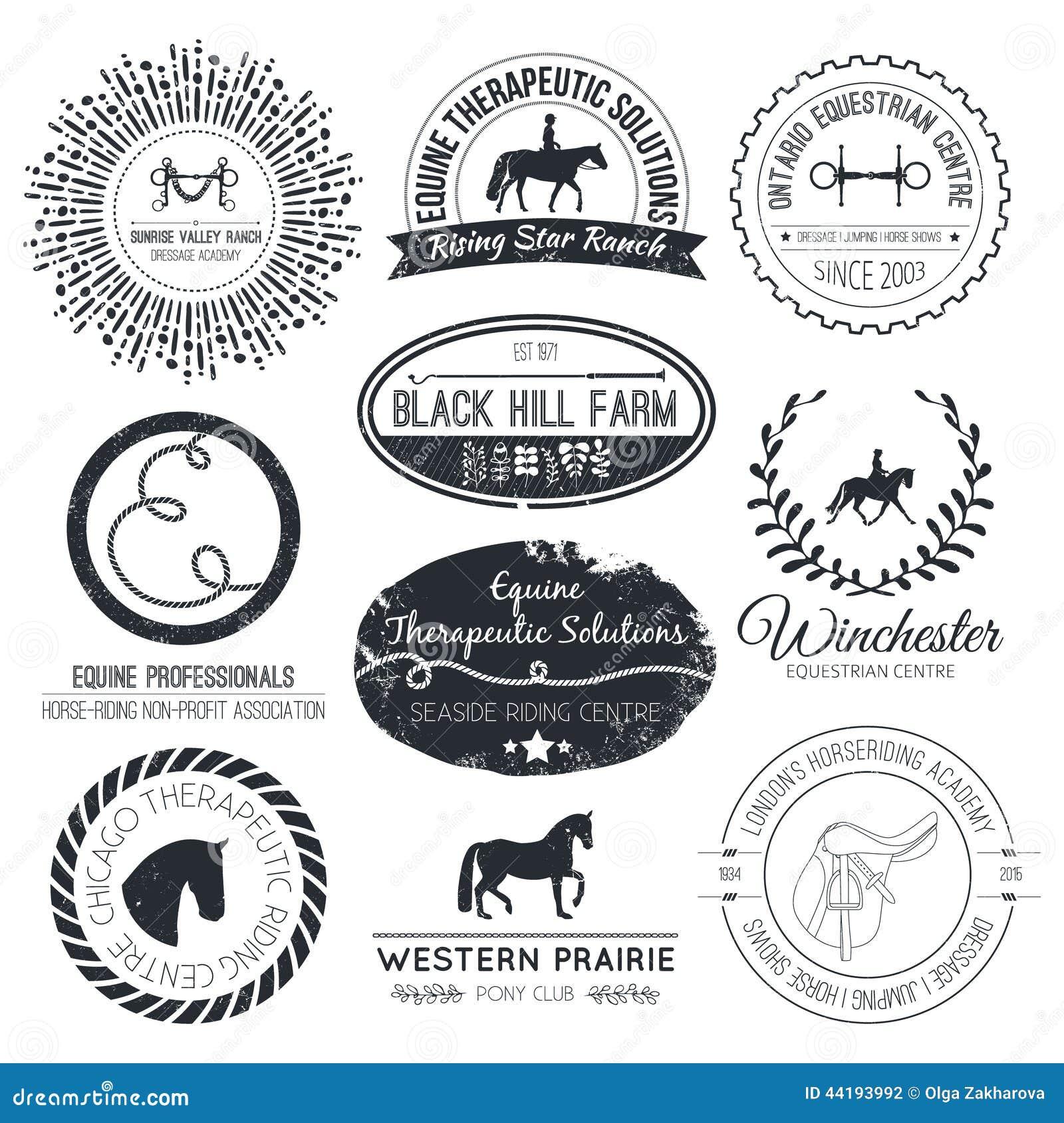 Equine логотип
