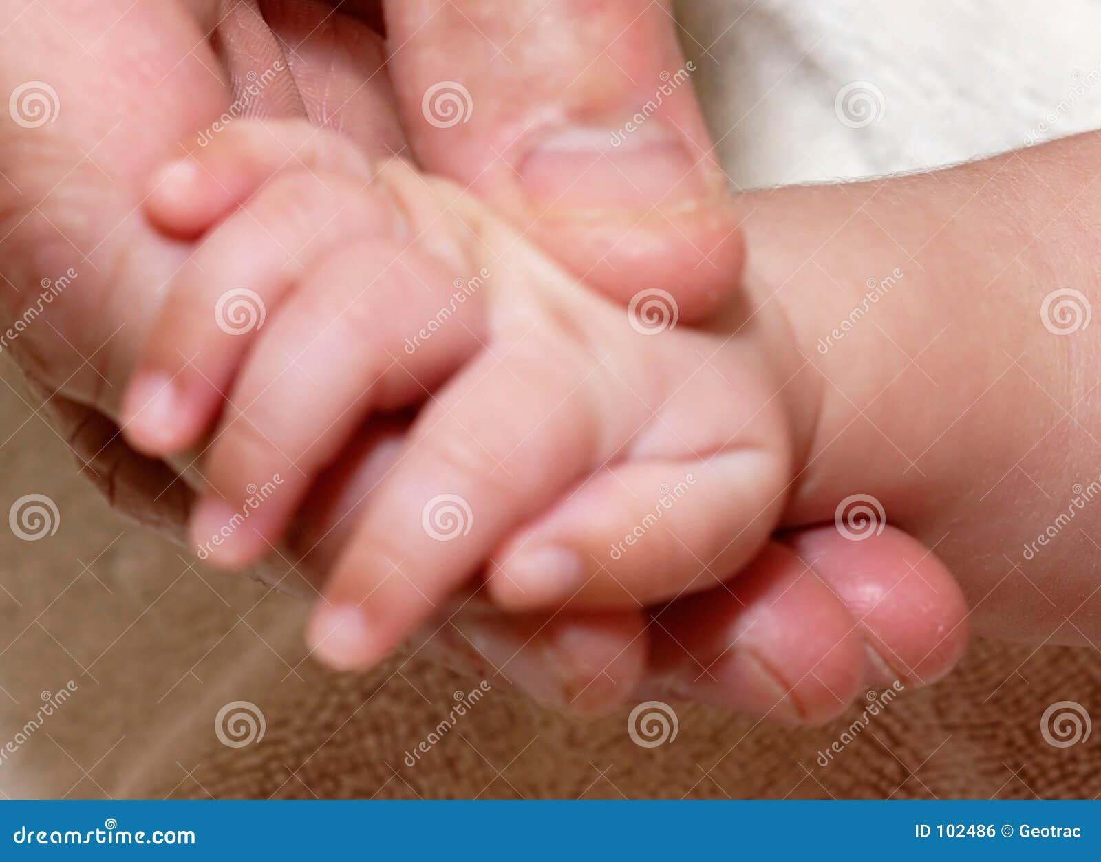 Equipa a mão do bebê da terra arrendada da mão