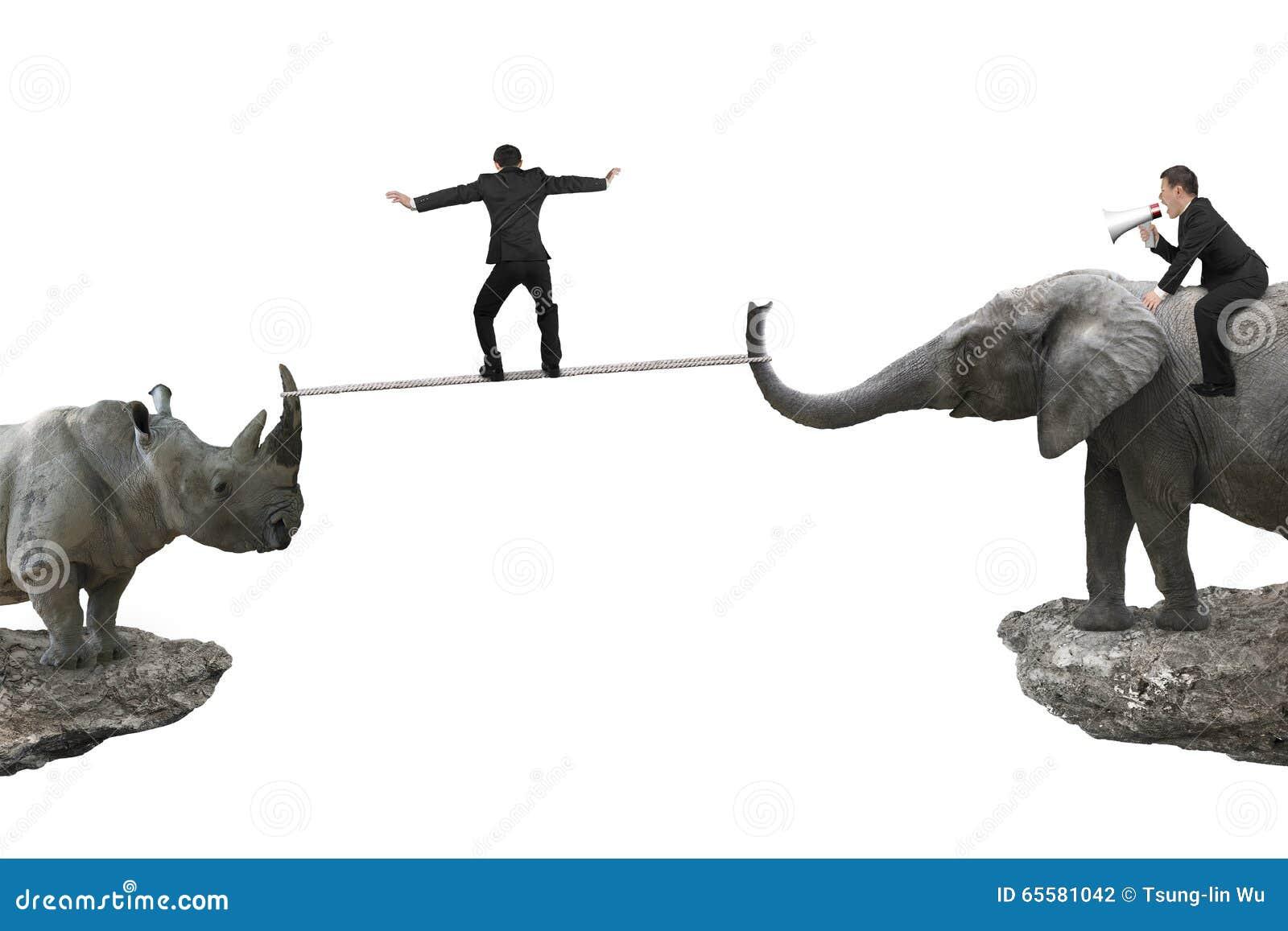 Equipe o elefante da equitação contra o rinoceronte com um outro ro de equilíbrio