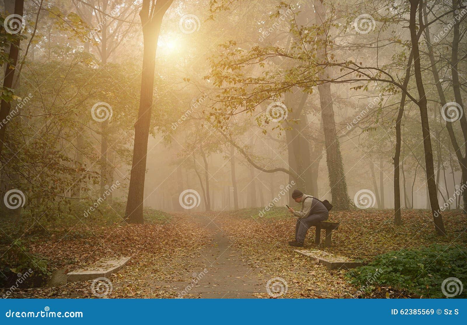 Equipe o uso seu telefone na floresta nevoenta