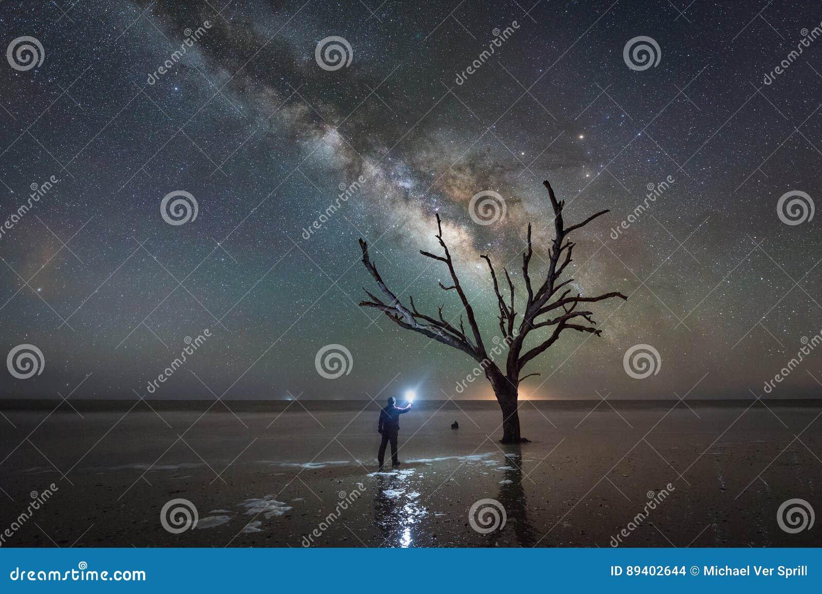 Equipe a posição sob uma árvore desencapada e a galáxia da Via Látea