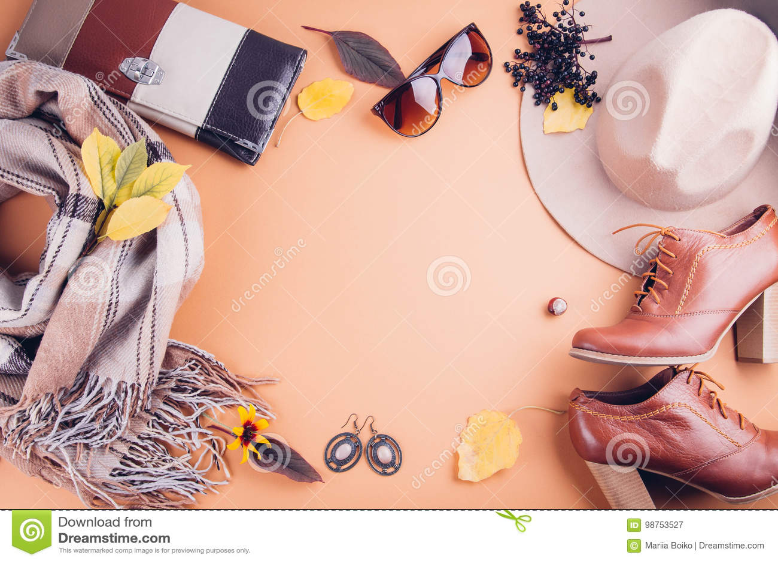 Equipo de la hembra del otoño Sistema de ropa, de zapatos y de accesorios