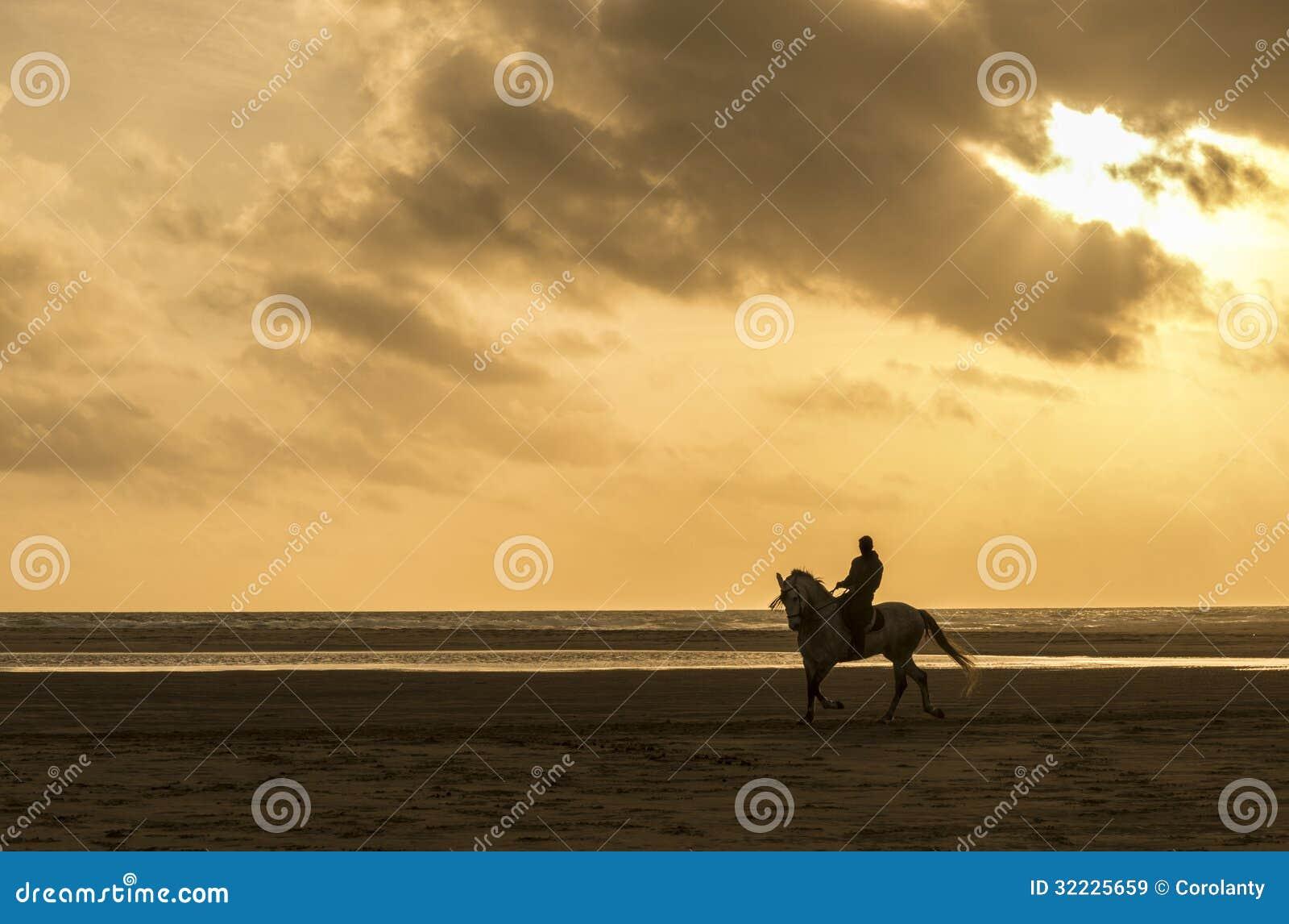 Download Equitação Do Homem Na Praia Imagem de Stock - Imagem de fundo, cópia: 32225659