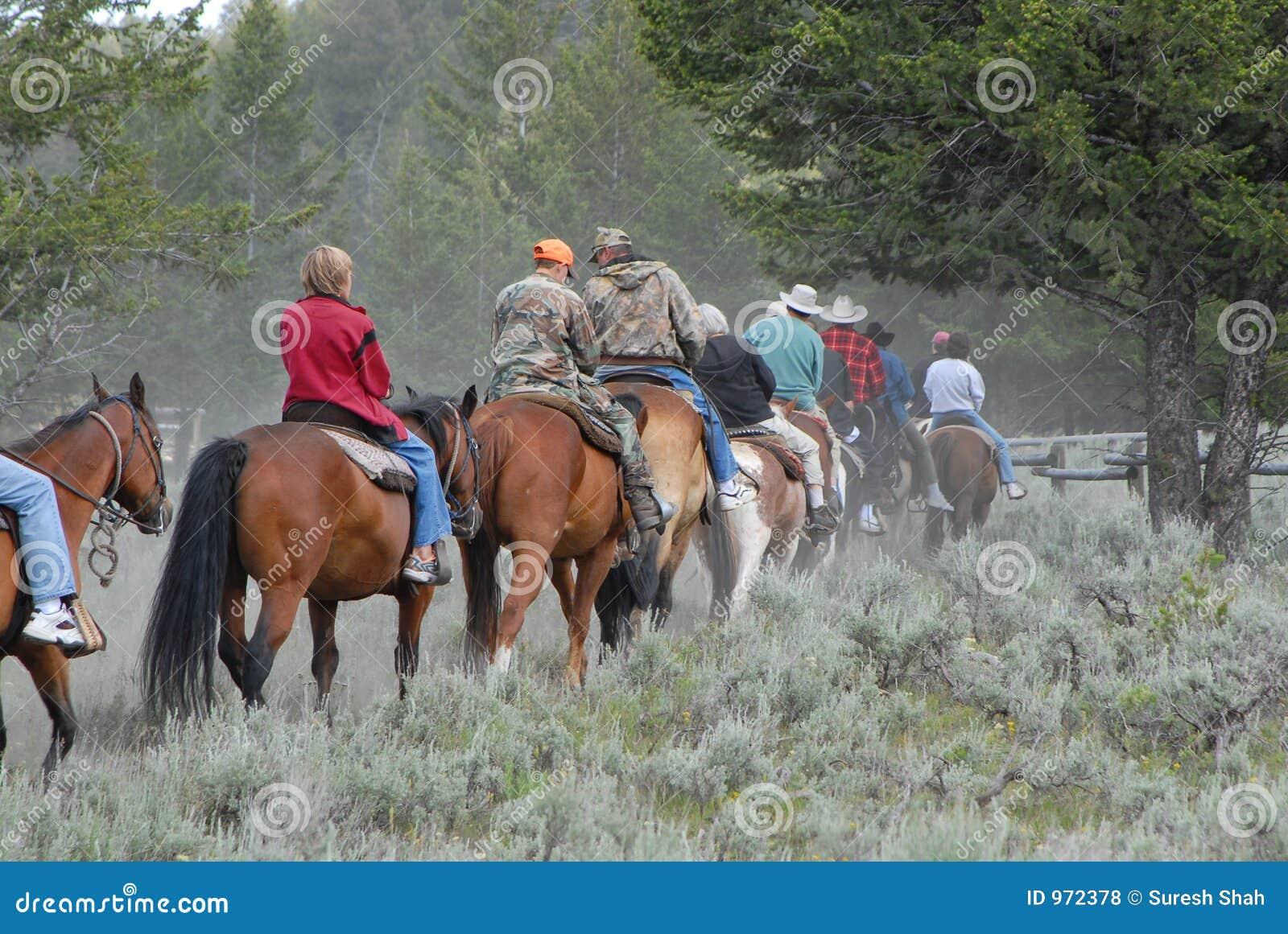 Equitação traseira do cavalo na fuga