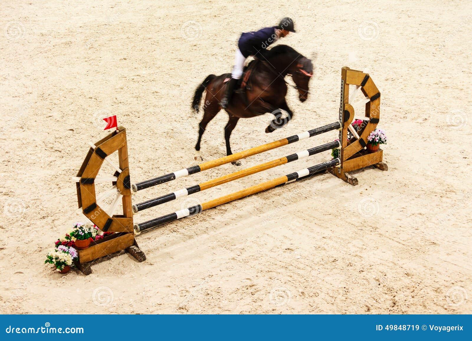 Equitation mostri il salto, il cavallo ed il cavaliere sopra il salto