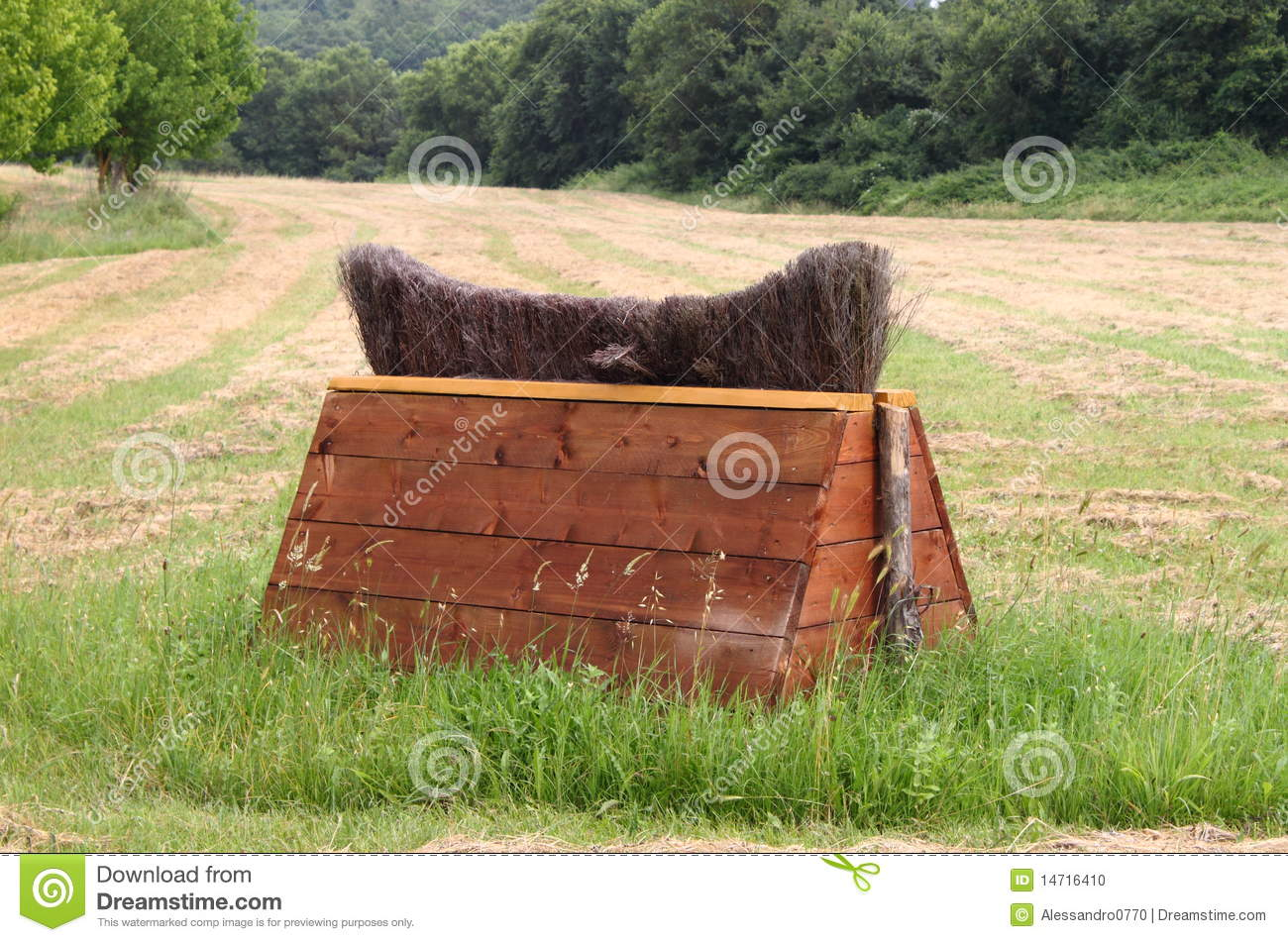 Download Equitation obstacle stock photo. Image of riding, object - 14716410