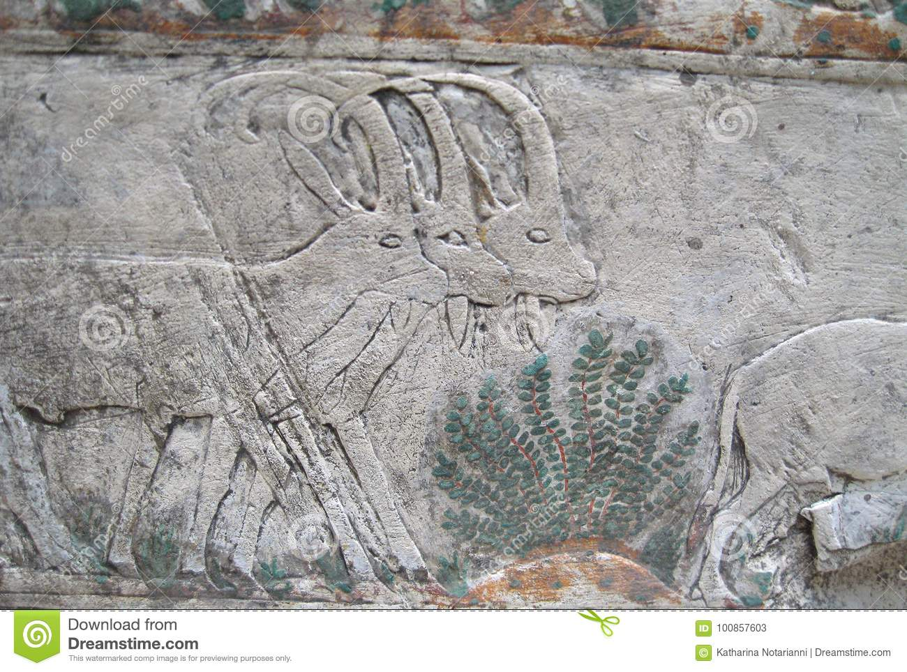 Ancient egyptian stone carvings stock image of