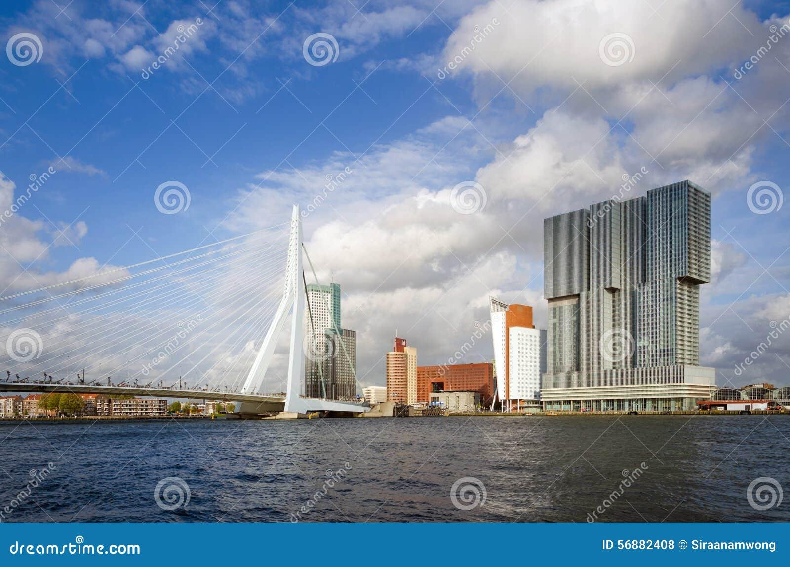 Erasmus Bridge con il grattacielo a Rotterdam