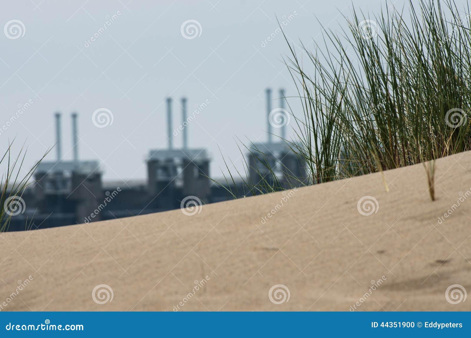 Erba su una duna vicino agli impianti di delta
