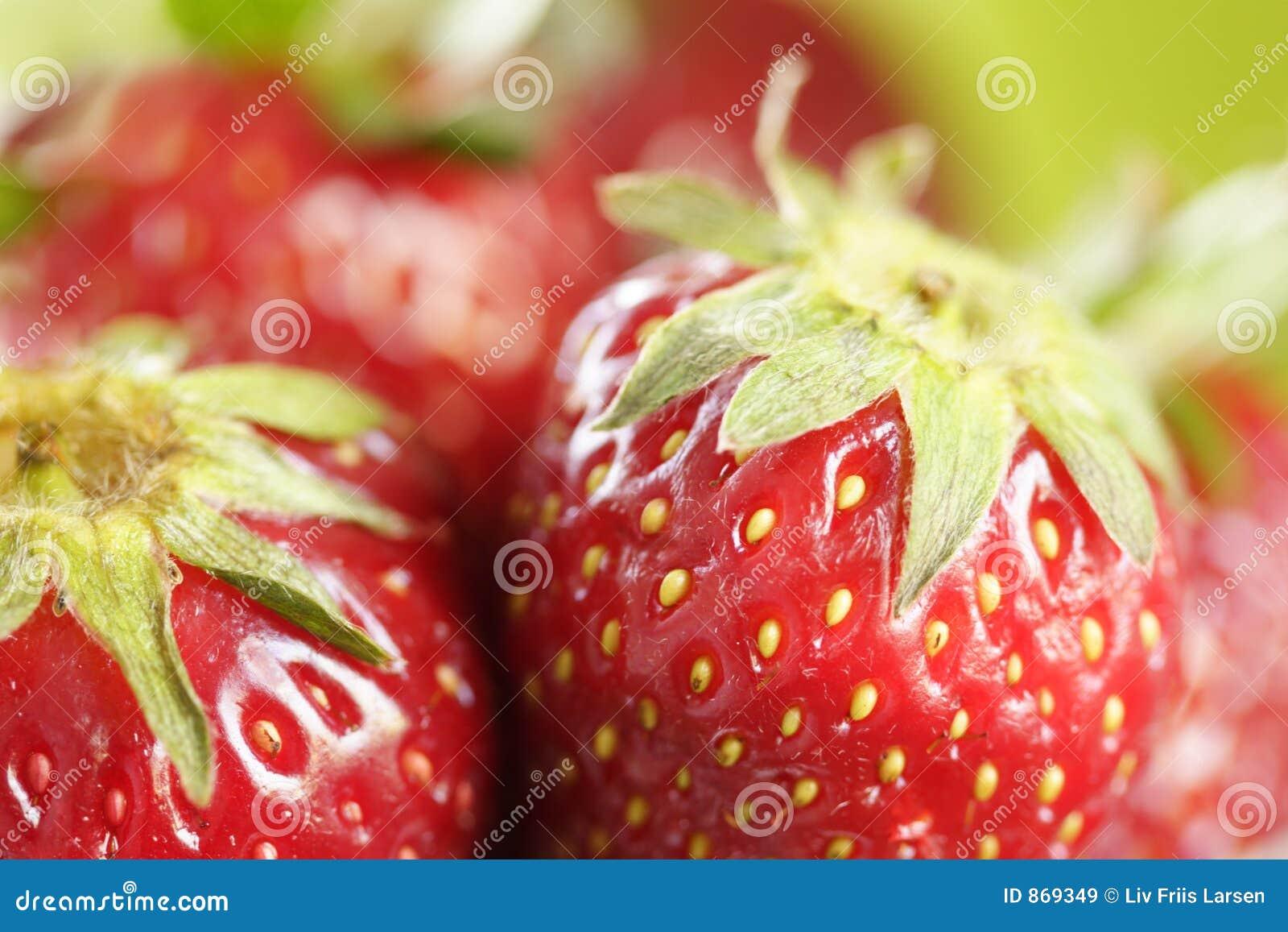 Erdbeeremakro