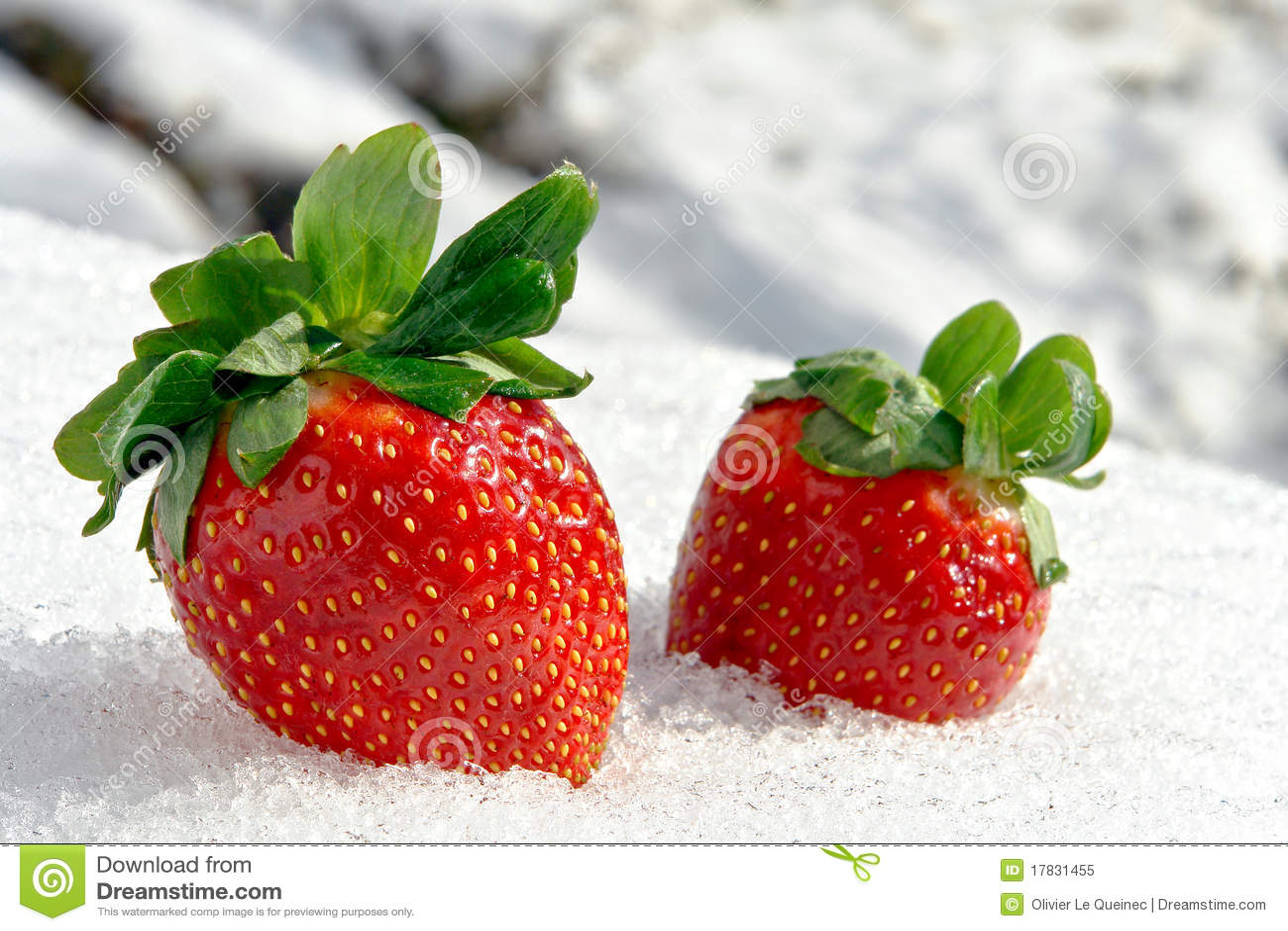 erdbeeren auf eis im winter stockbild bild 17831455