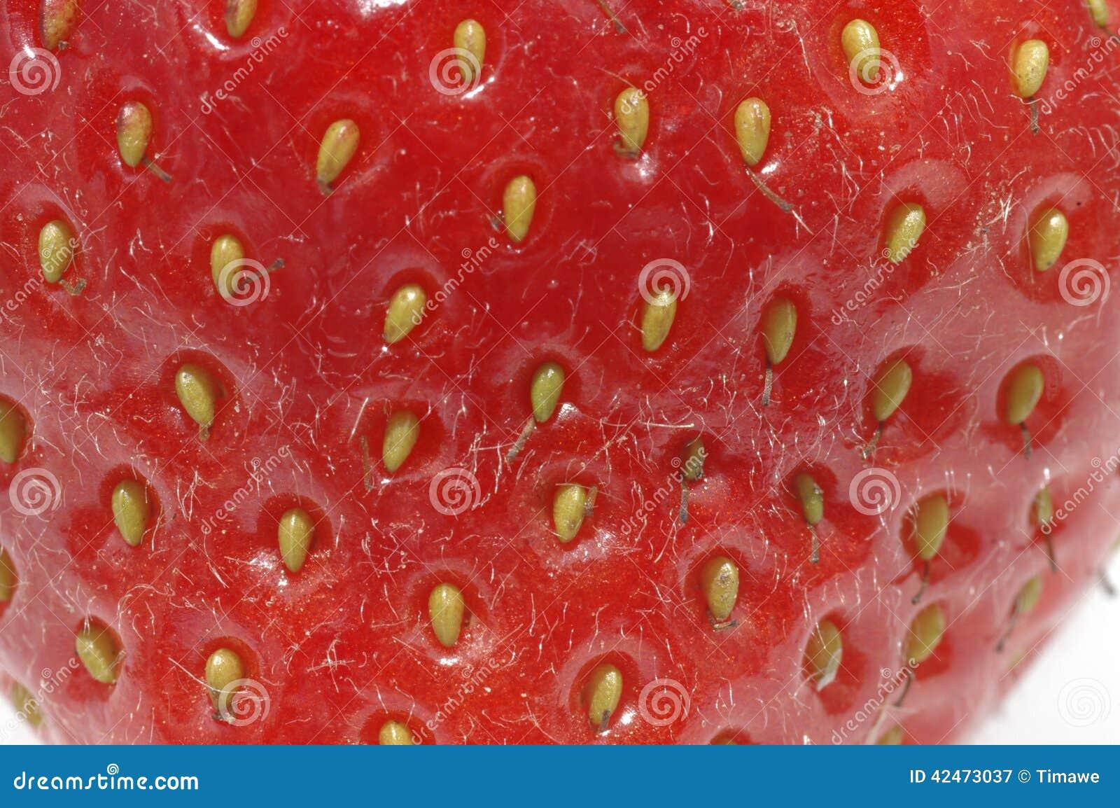Erdbeernahes hohes