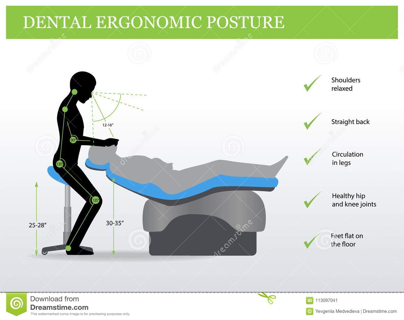 Ergonomics In Dentistry Correct Posture Stock Vector