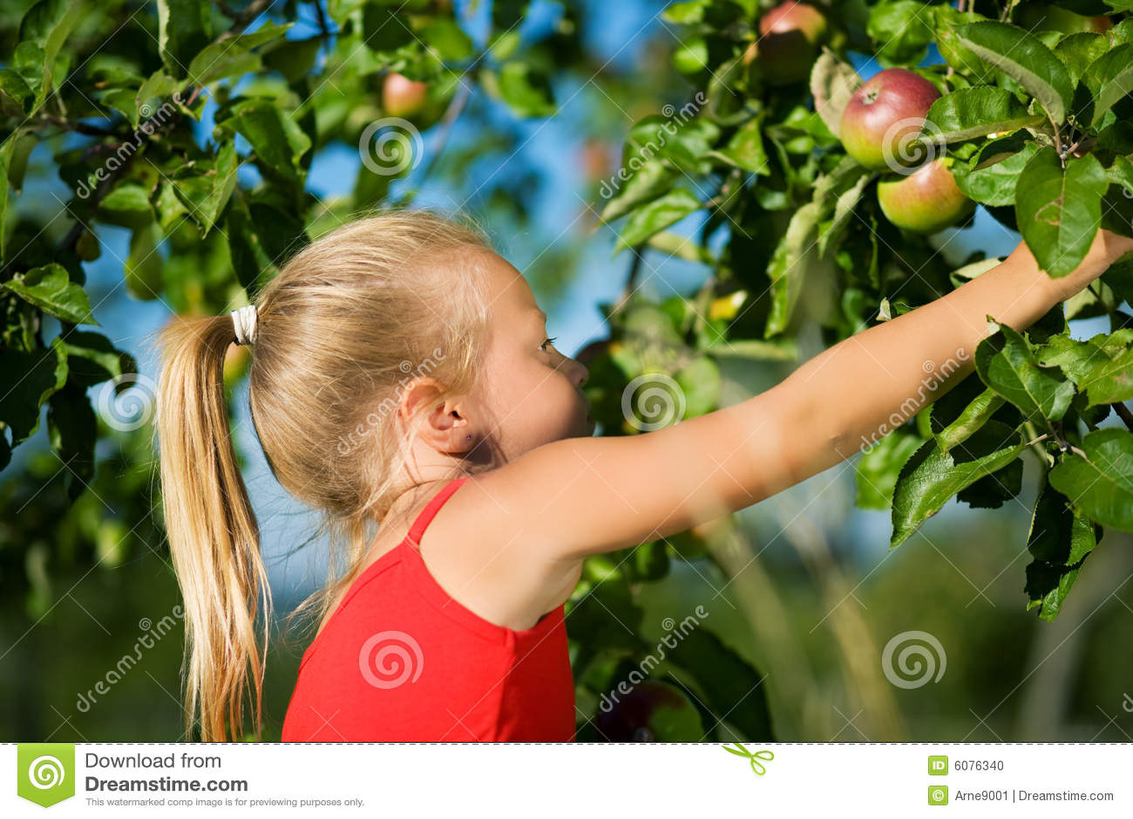 Ergreifung des Apfels