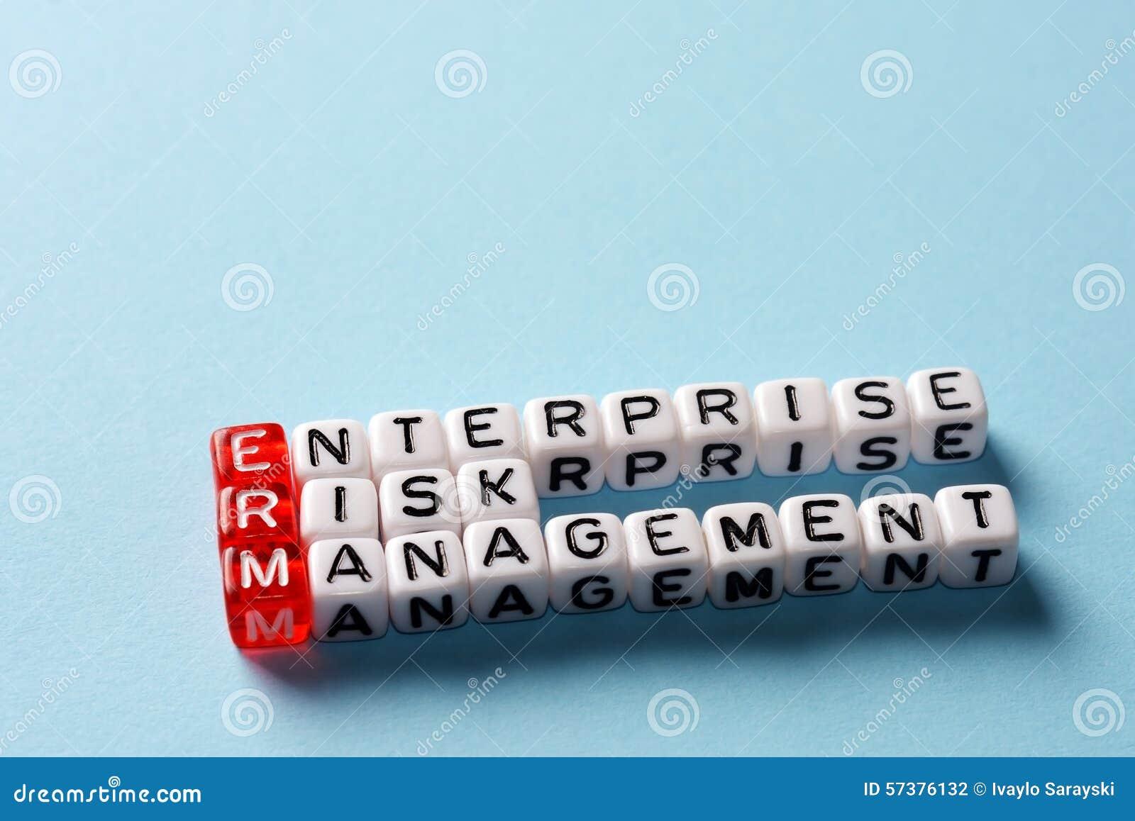 ERM het blauw van het Ondernemingsrisicobeheer