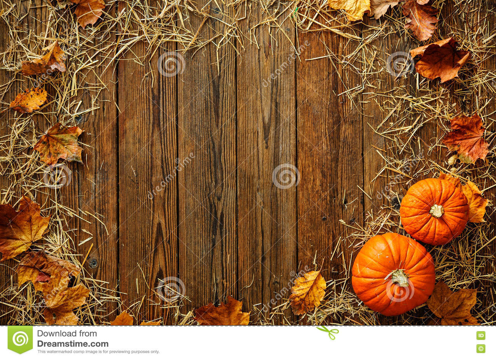 Ernte- oder Danksagungshintergrund mit Kürbissen und Stroh