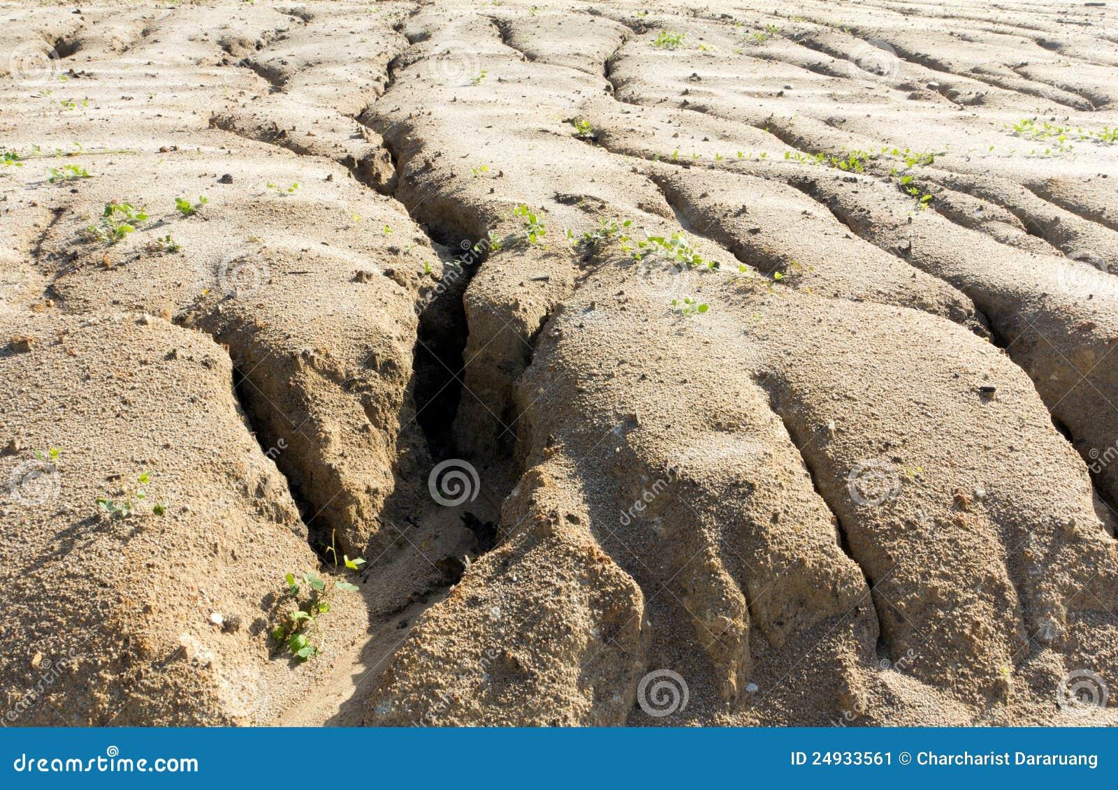 Erosi n de suelo a llevar del pastoreo excesivo imagen de for Suelos para jardines fotos