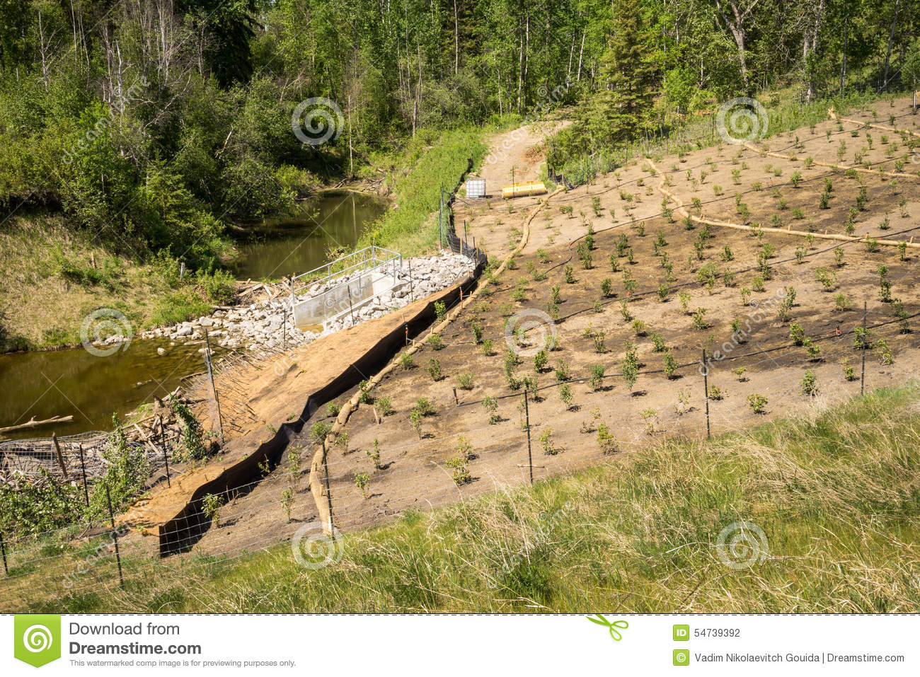 Erosion Control On A Slope Landscape Project Stock Photo