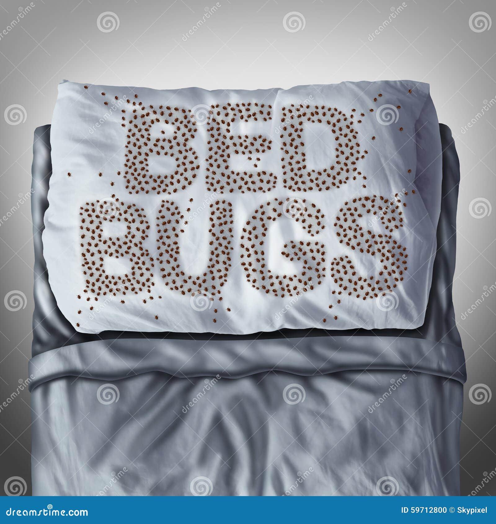 Erros de cama no descanso